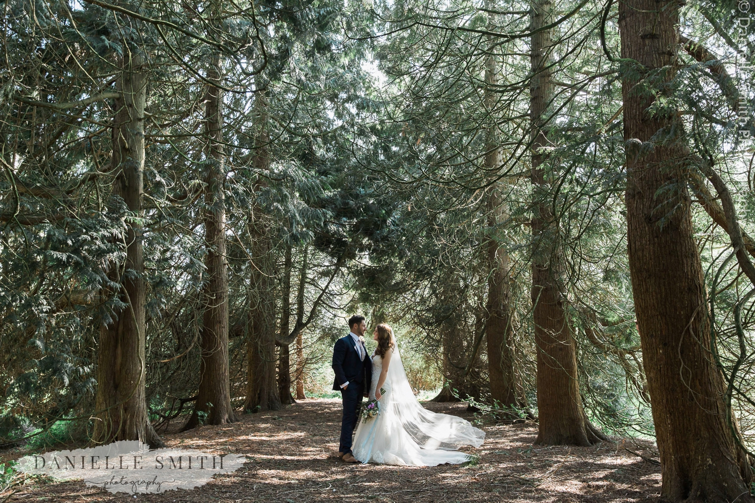 bride and groom wedding portraits in the woodland