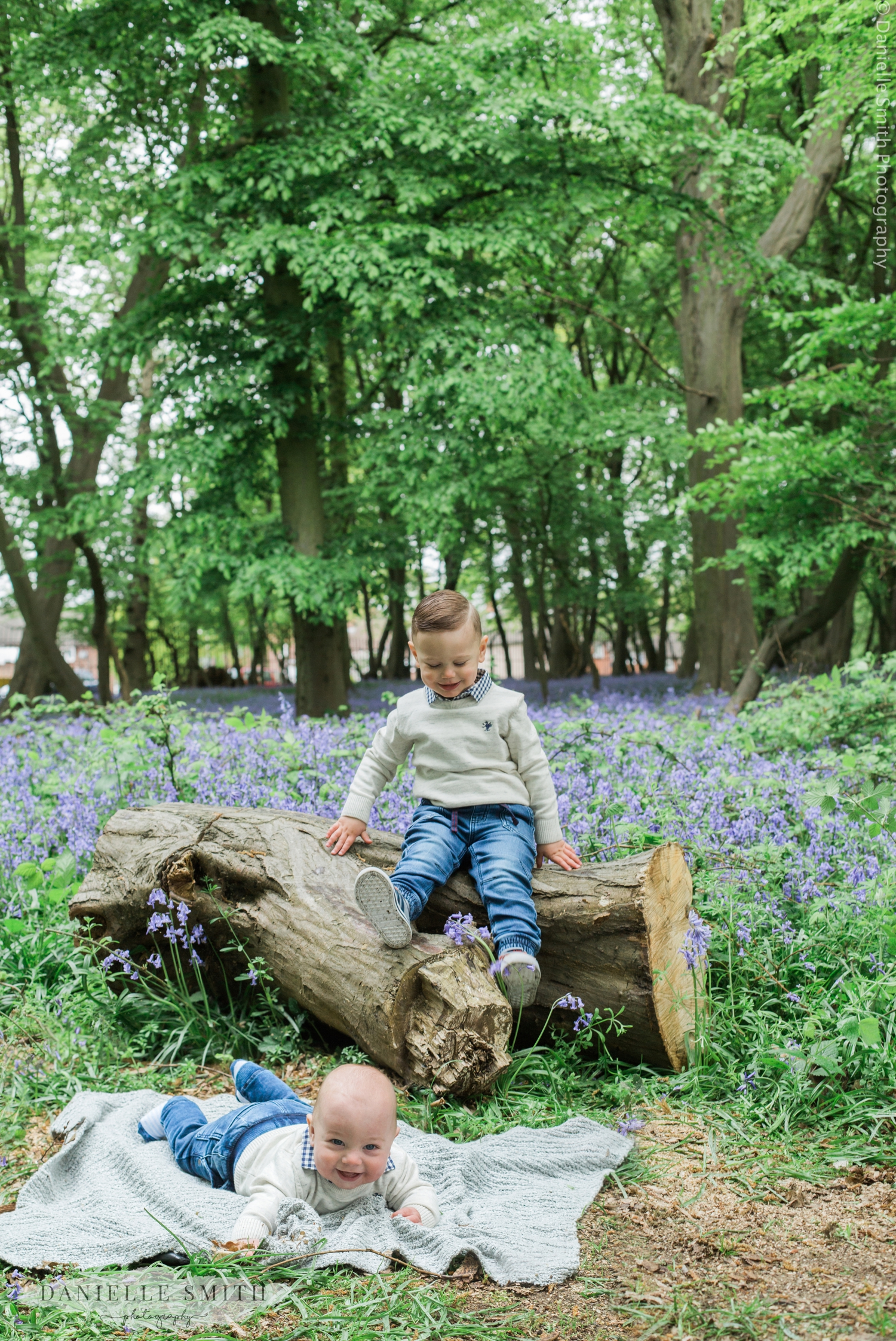 brothers in bluebell woods - family photography essex