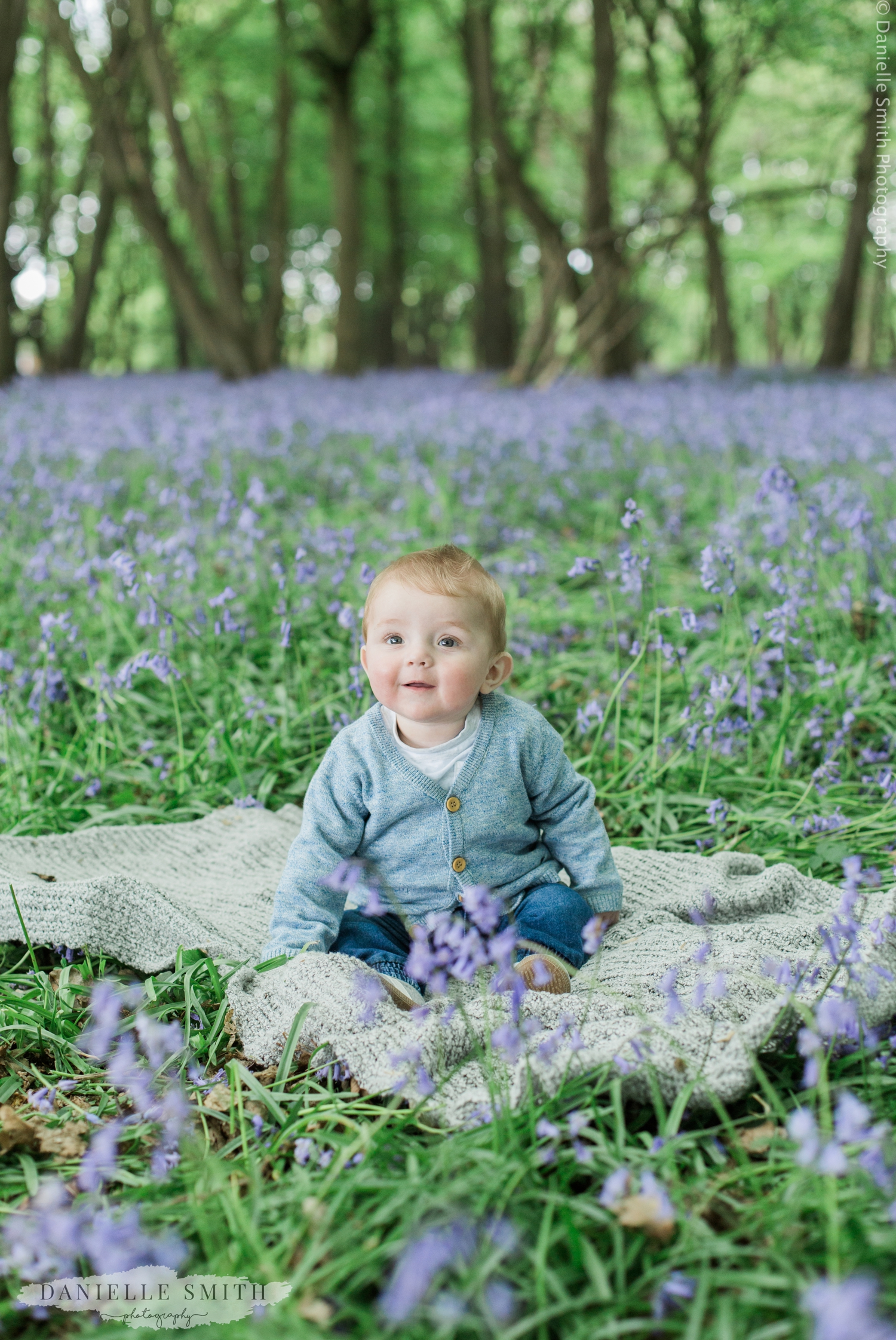 little boy sitting in bluebell woods