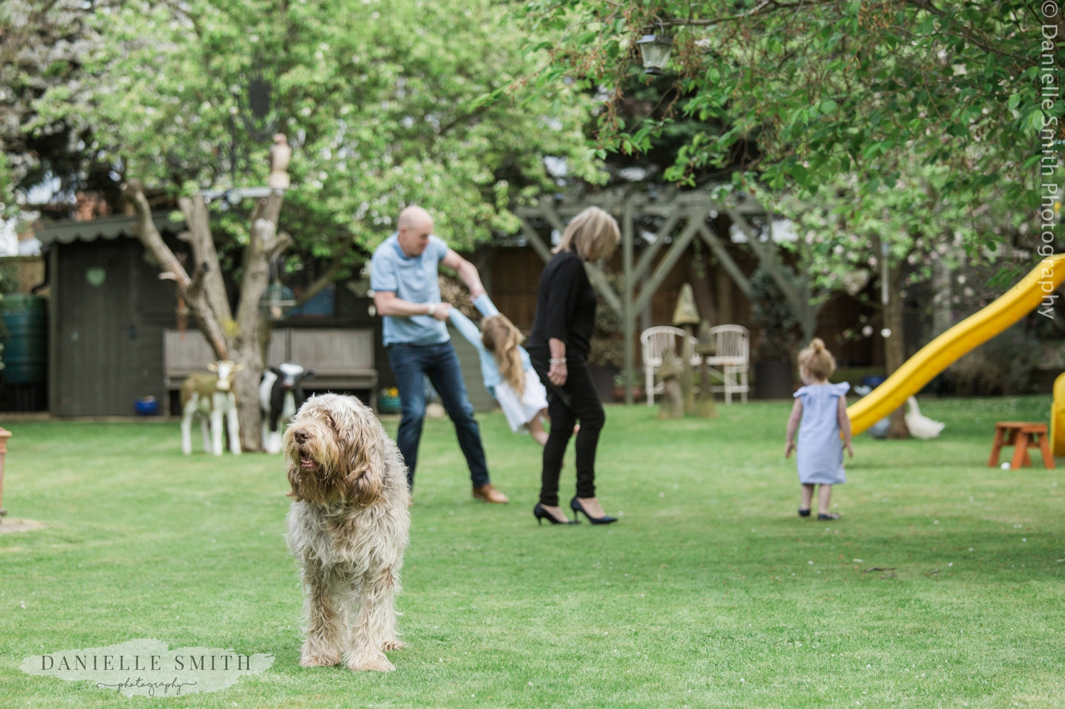 family playing in garden with dog