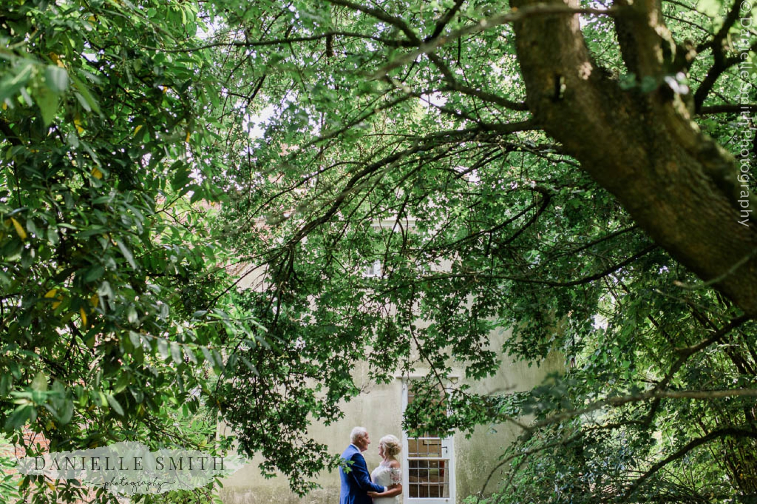 bride and groom under huge tree