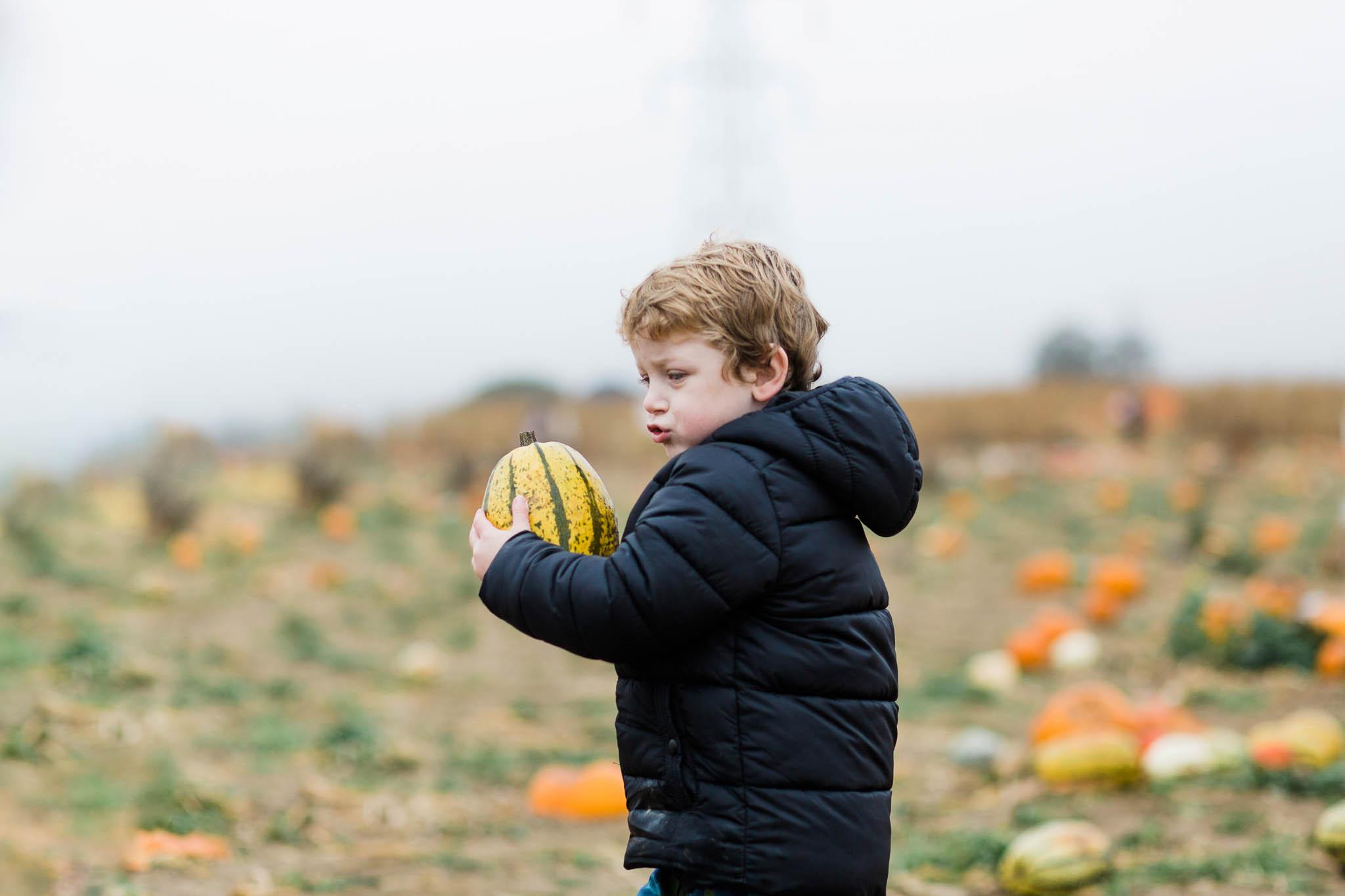 boy holding pumpkin - pumpkin patch family photography