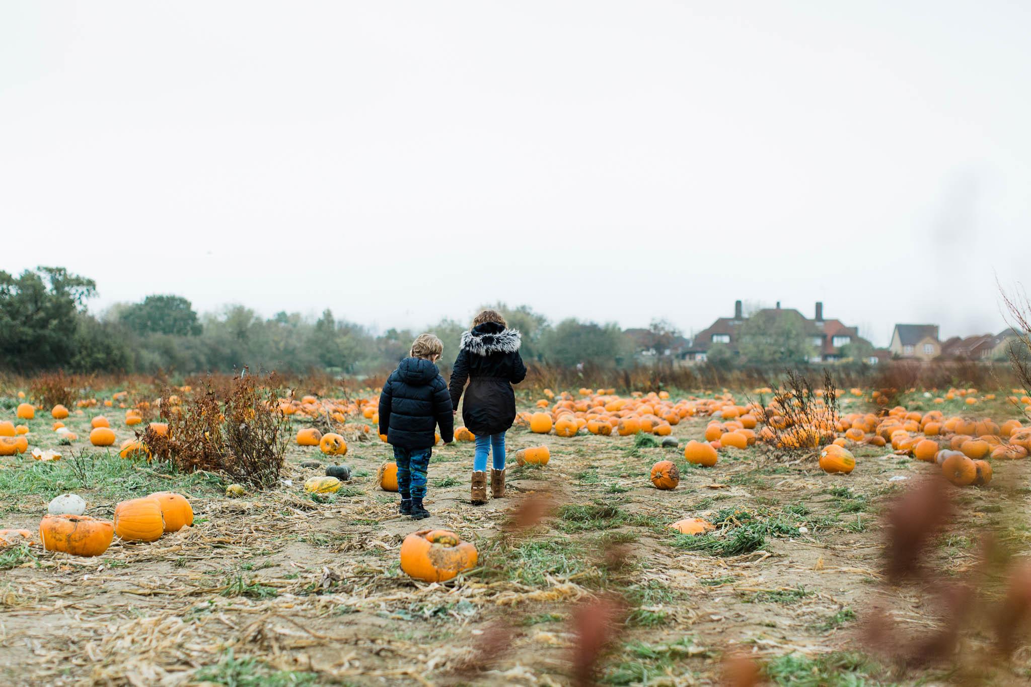 family photo at pumpkin picking farm