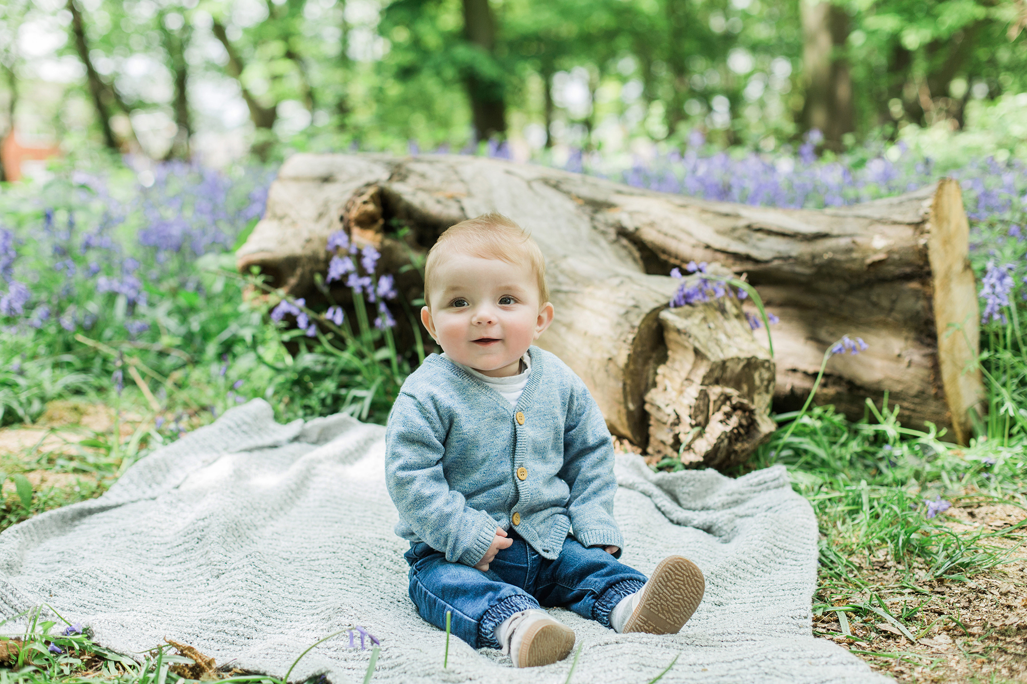 Spring Bluebell Mini-Sessions