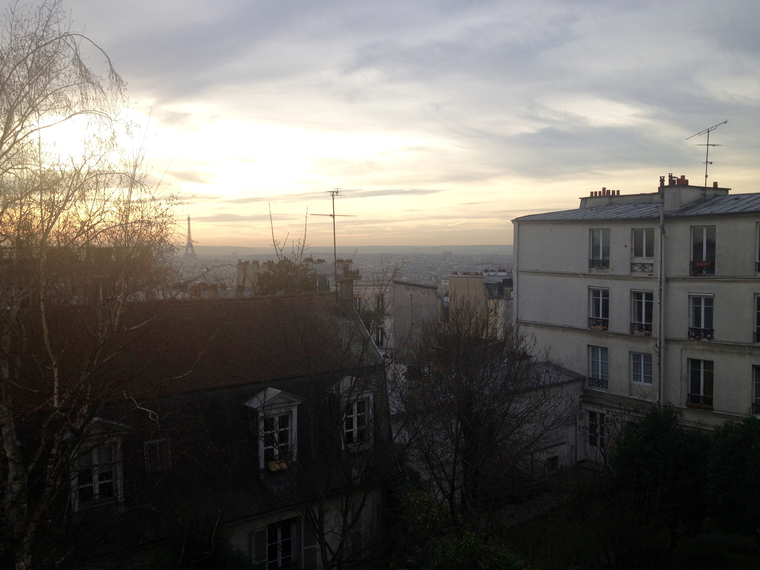 You can just barely make out the Eiffel Tower in the distance but I still love this shot.