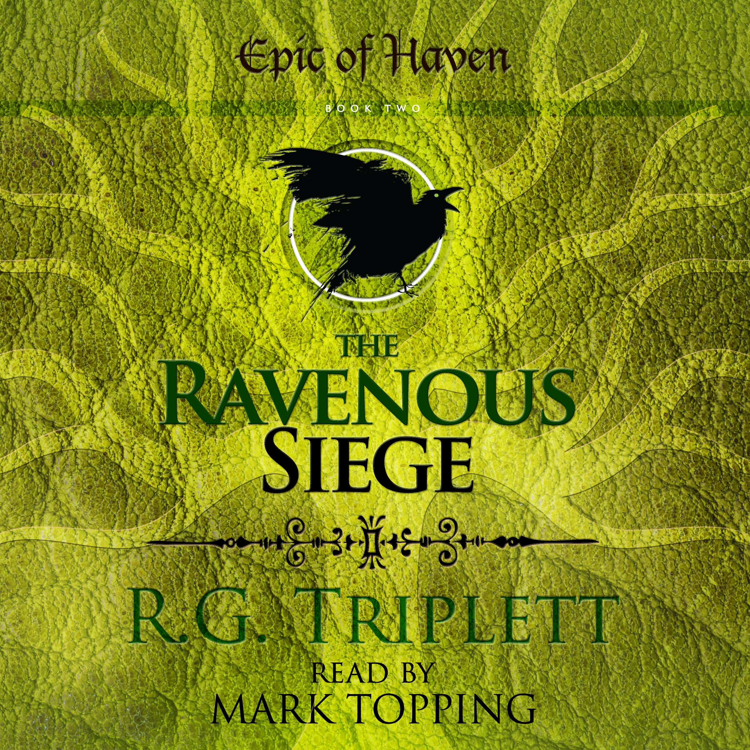 TRS Audio Book Cover.jpg