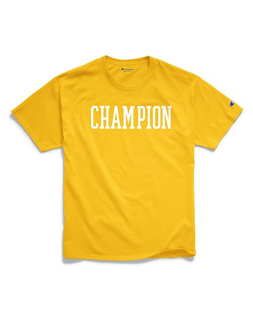champion mens classic jersey Tee block logo.png