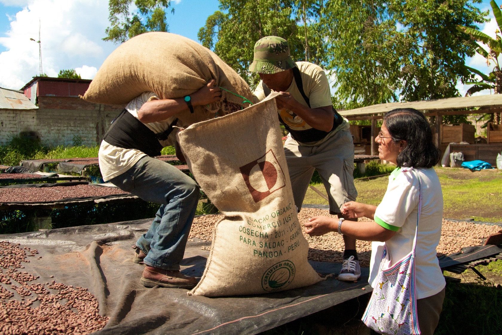 Esperanza supervises Pangoa employees preparing sacks of dried cacao. (Photo: Root Capital)