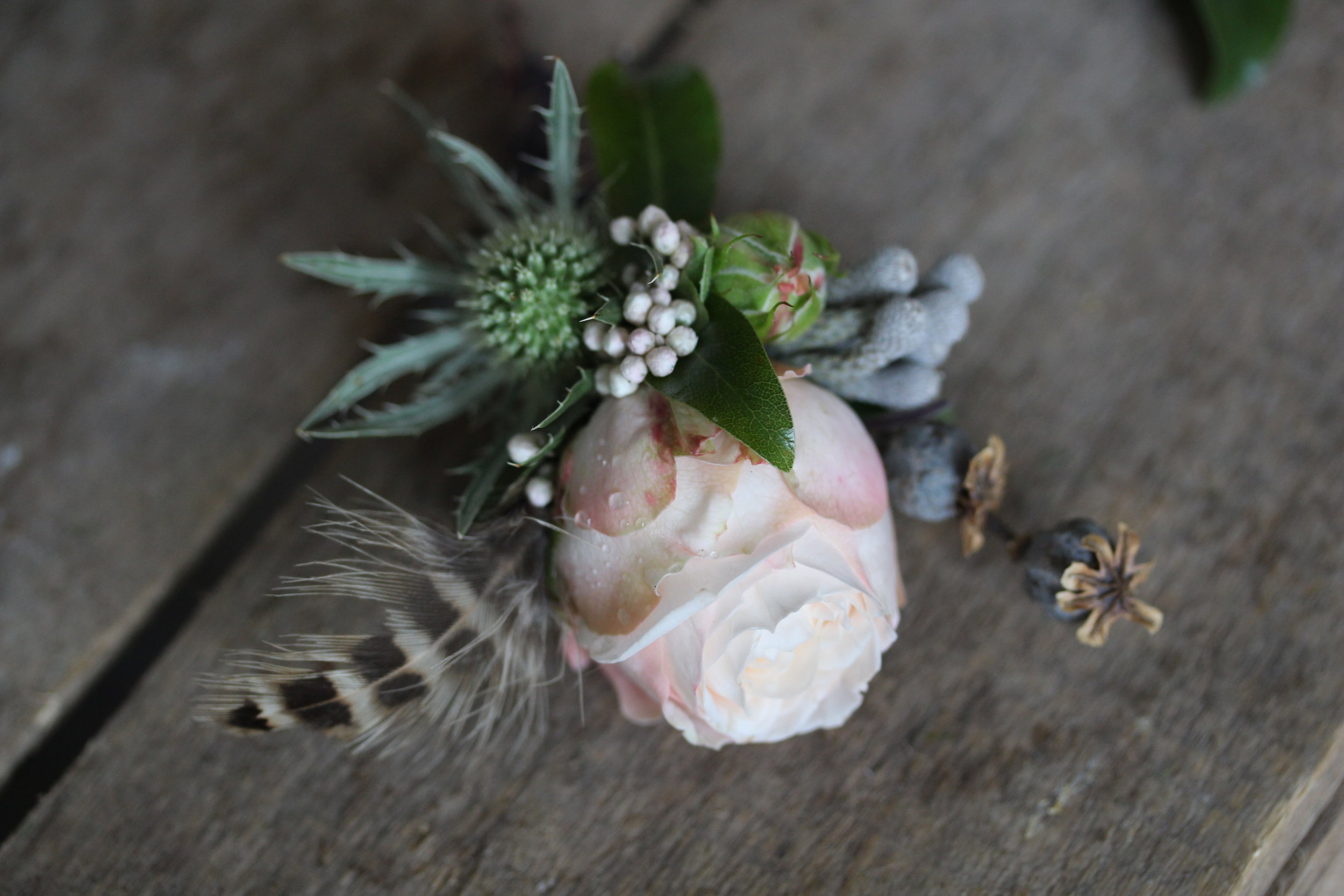 One of nine individual buttonholes. This one has a touch of thistle, brunnia, hen pheasant feather, some tiny dried poppy seed heads and to smidge of Osmanthus (the little grey/white balls).