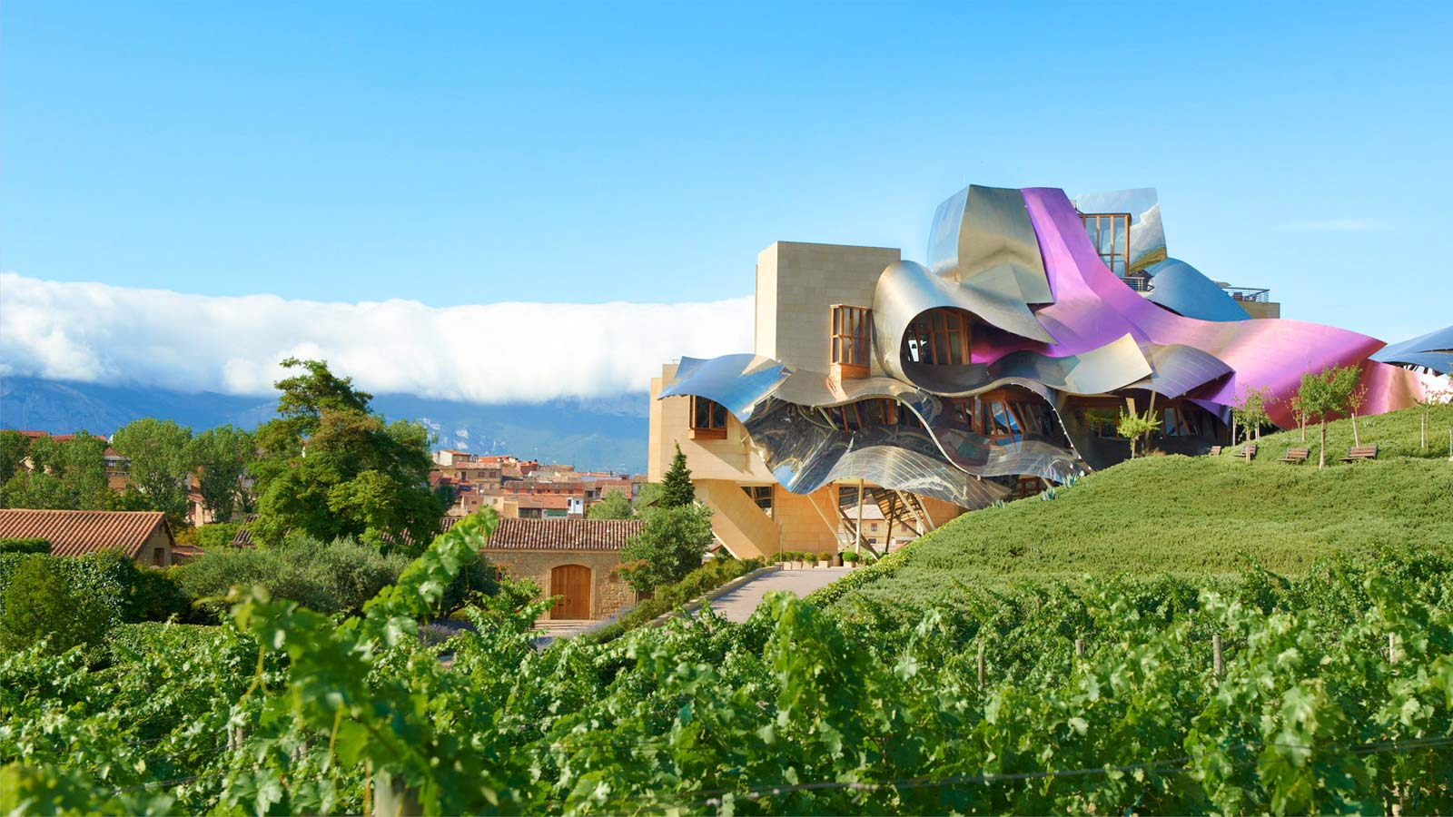 DRINK UP  - A WEEKEND IN RIOJA
