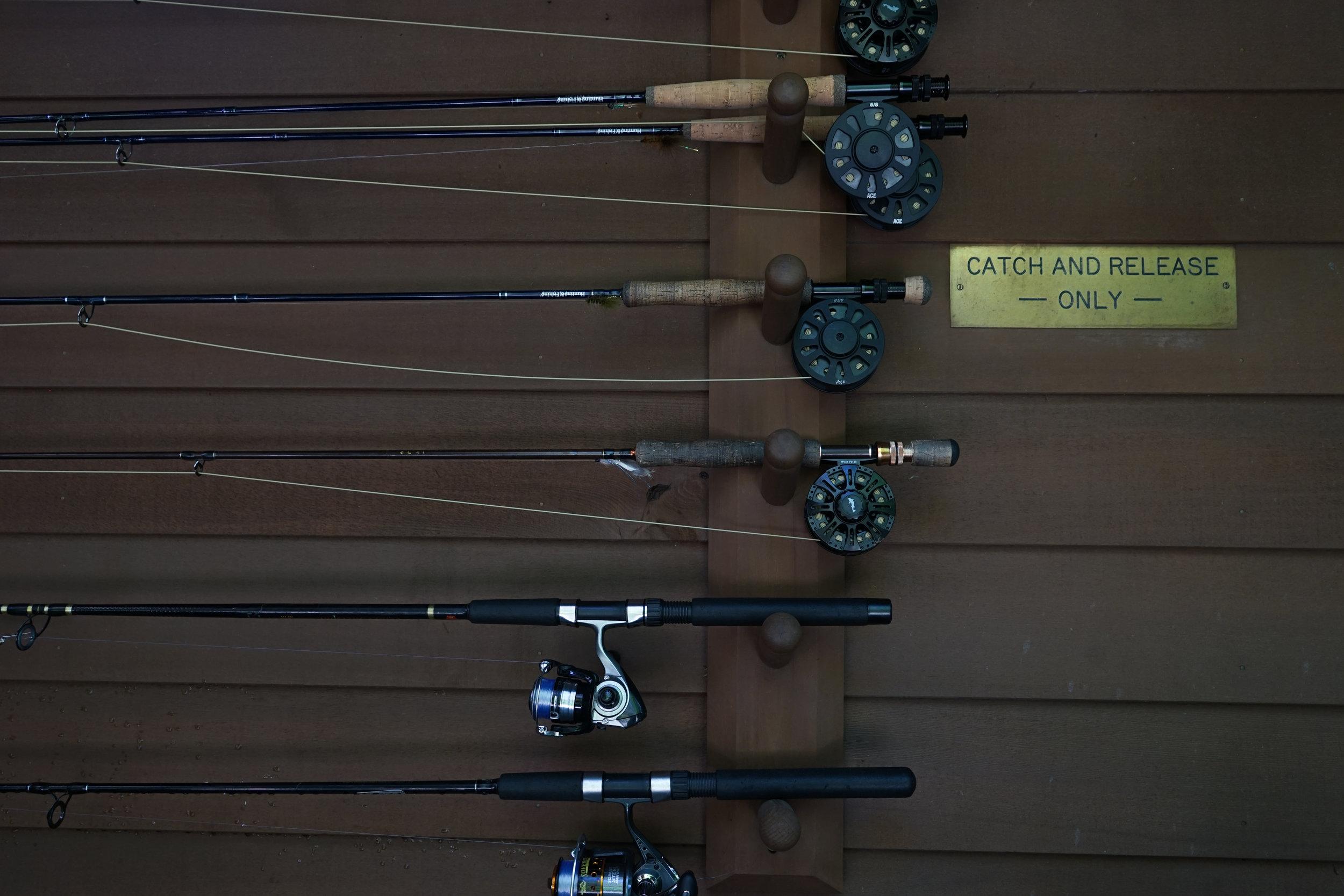 Daytripper 365 Huka Lodge-07101.jpg