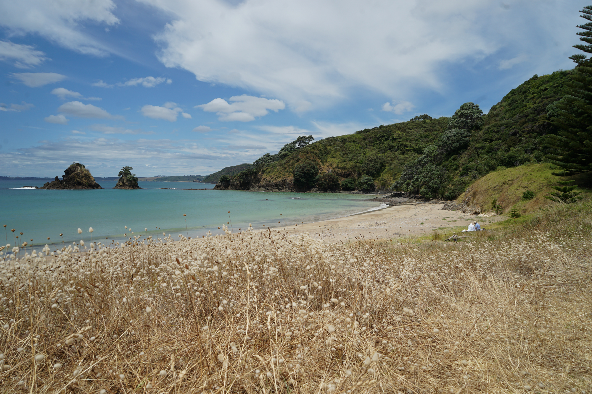 And three private beaches, including pink beach below, named for the tiny pink shells that tint the sand. The weekly beach bbq held there is not to be missed!