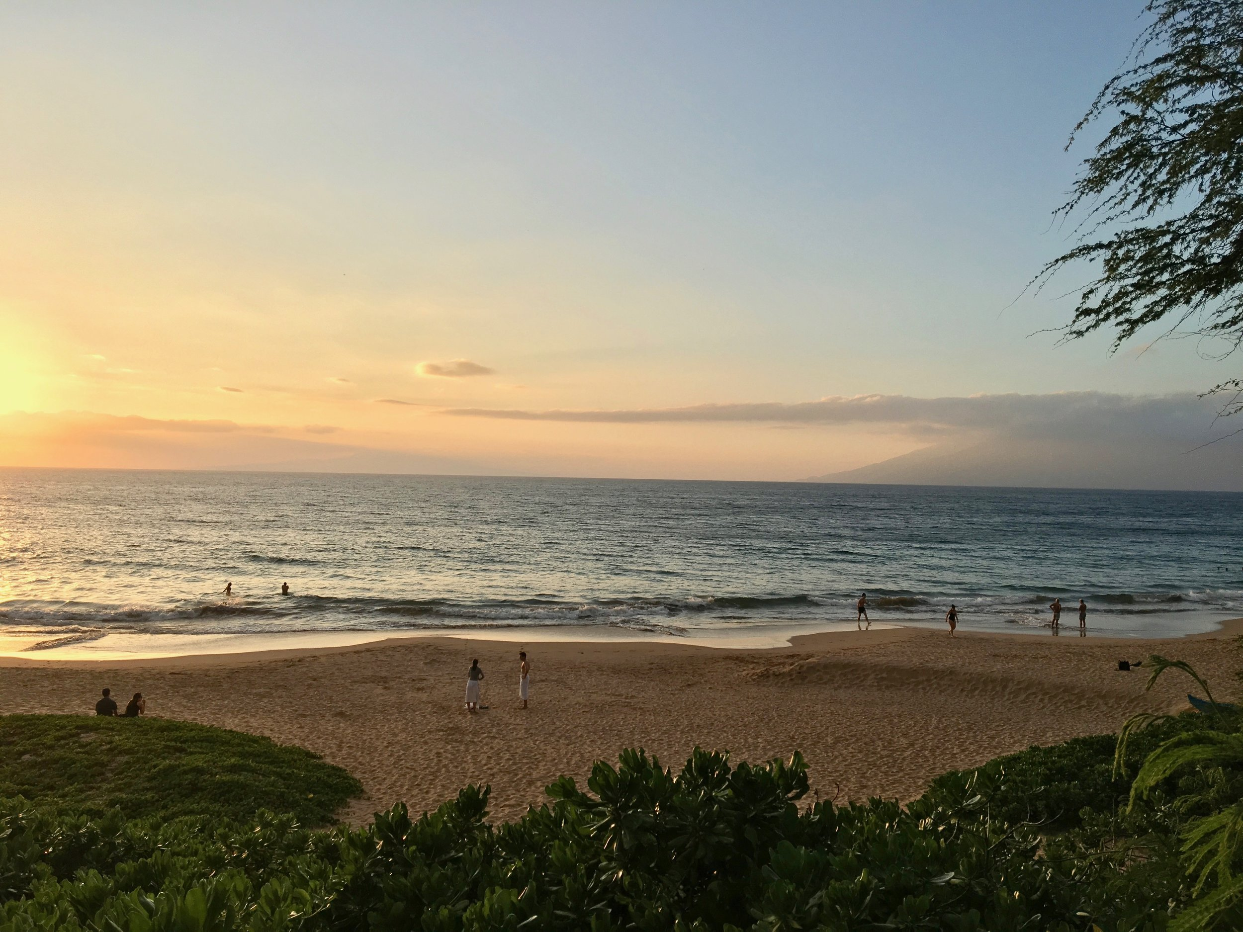Maui Best Restaurants Hotels And Things To Do In Wailea