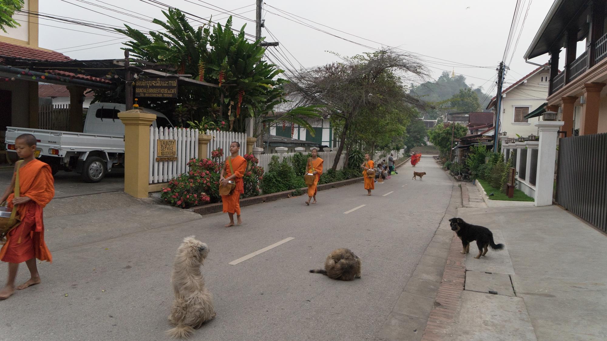 Daytripper365 Laos (27 of 39).jpg