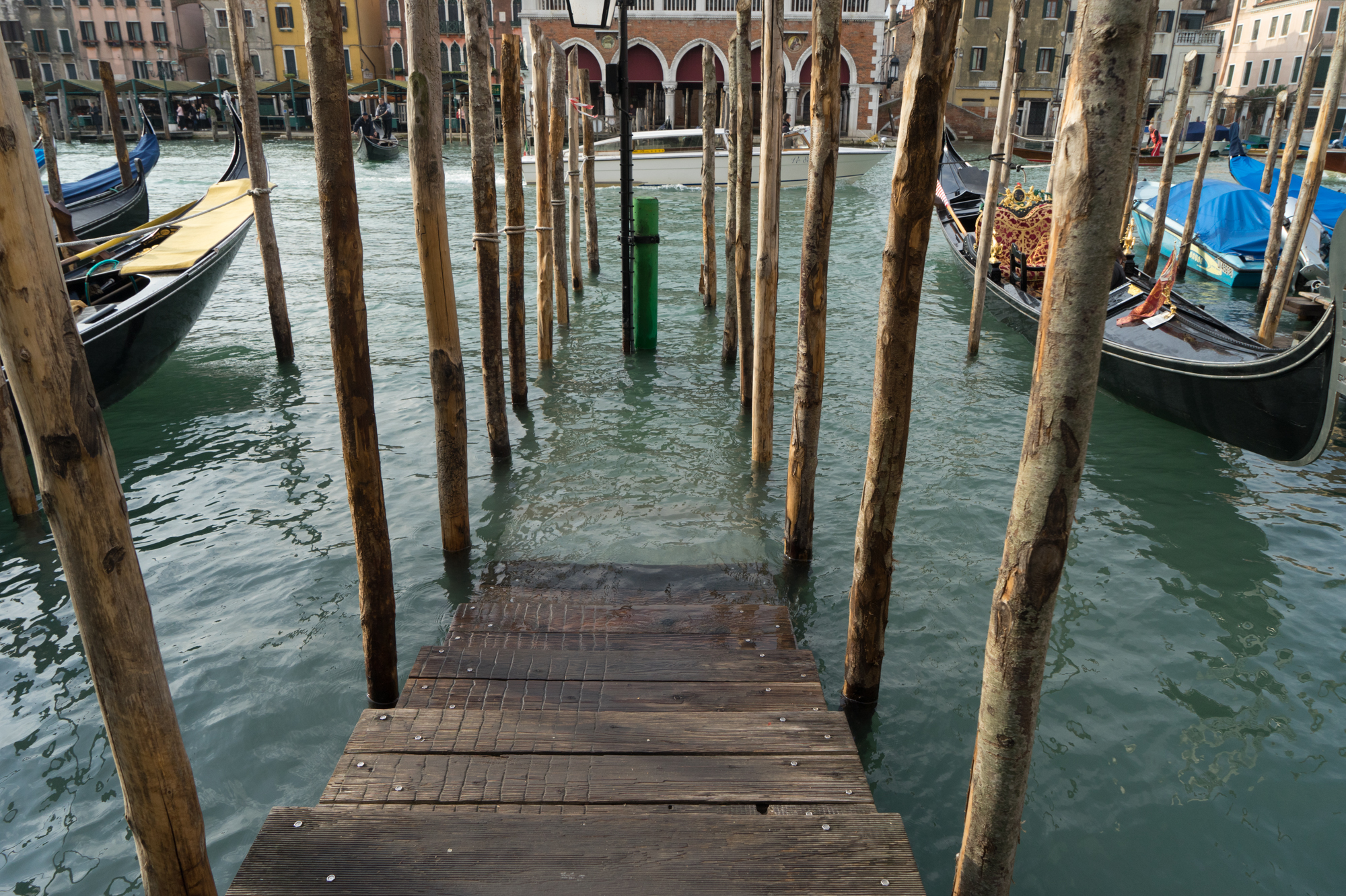 Daytripper Venice (8 of 14).jpg