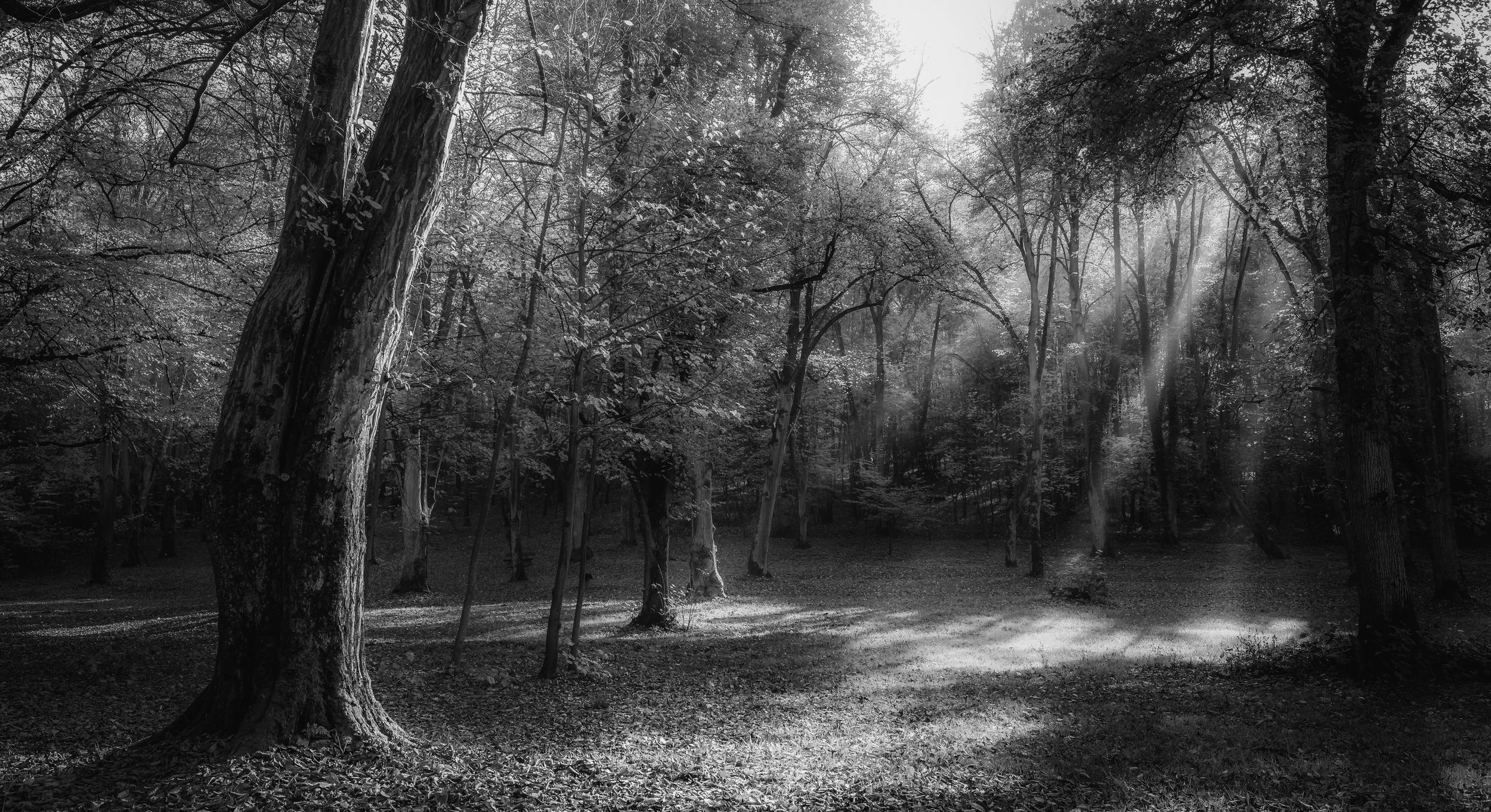 Bielańsko - Tyniecki Park Krajobrazowy