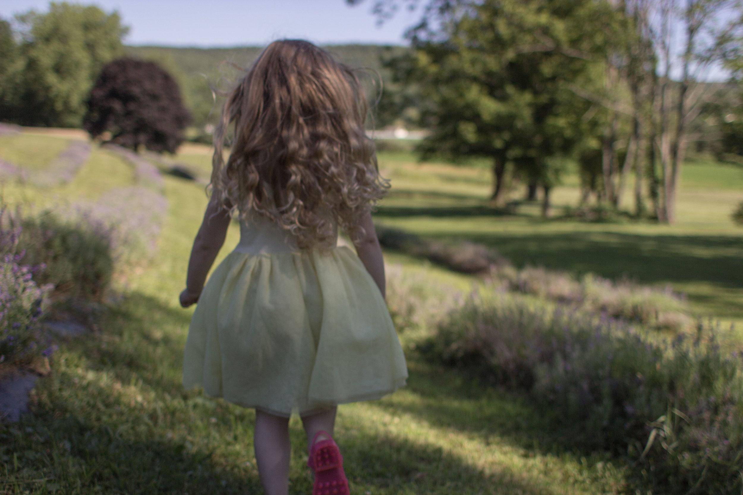 lavender-8.jpg