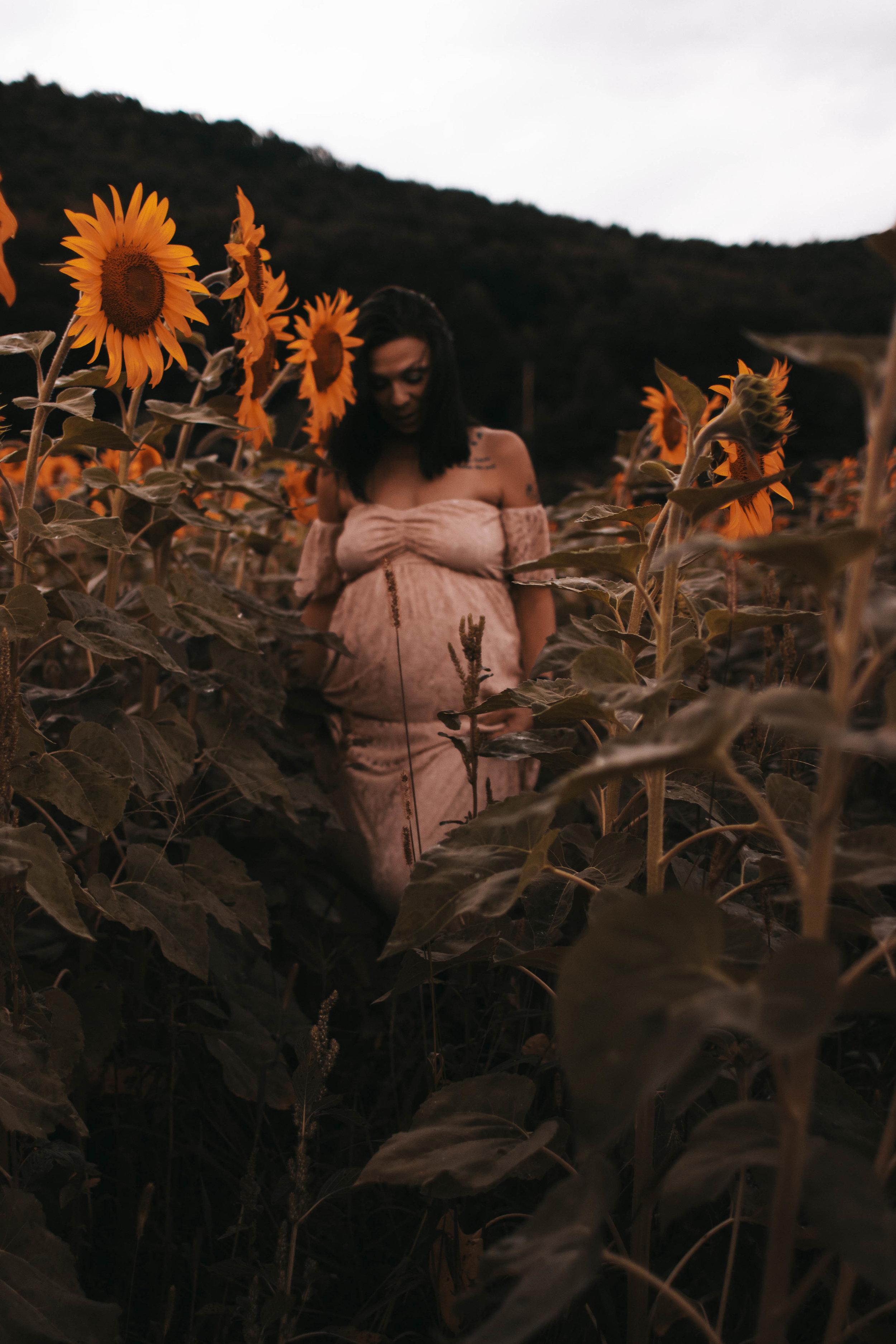 maternity photographer ithaca new york