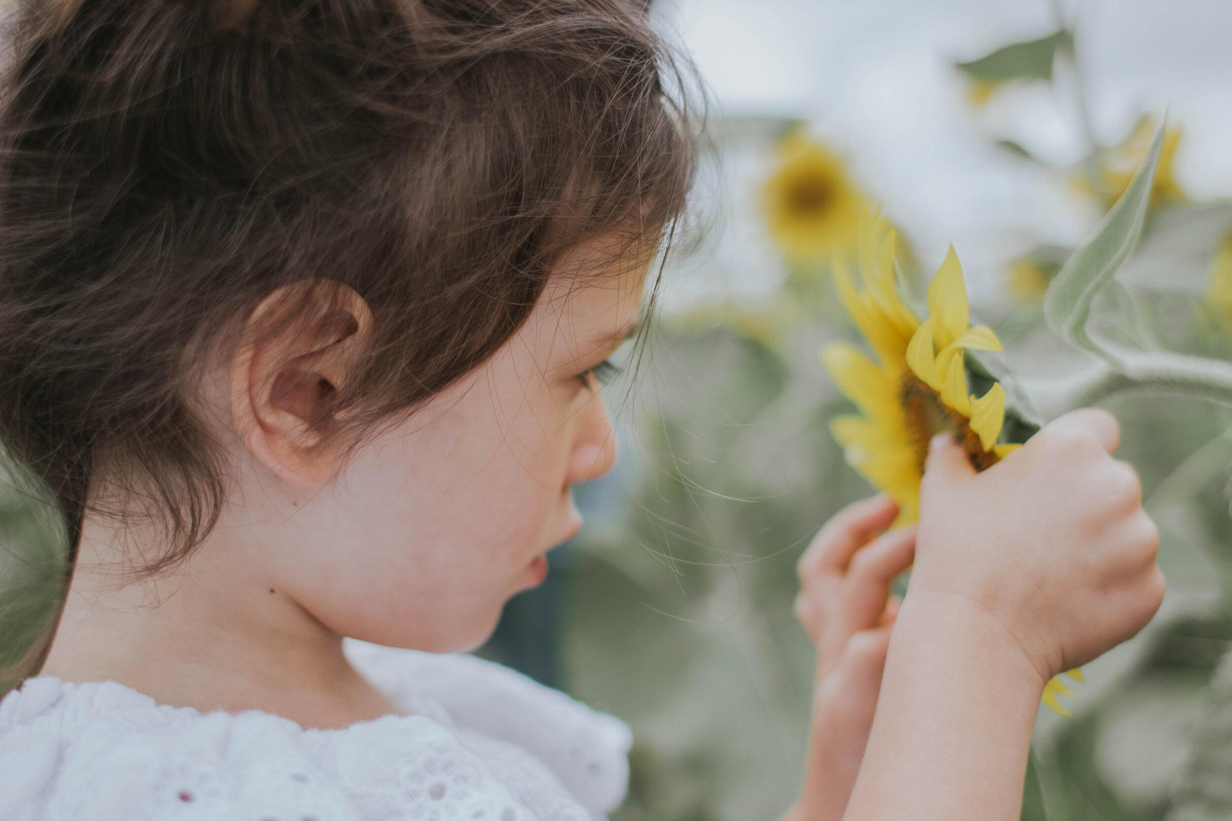 sunflowerlove-39.jpg