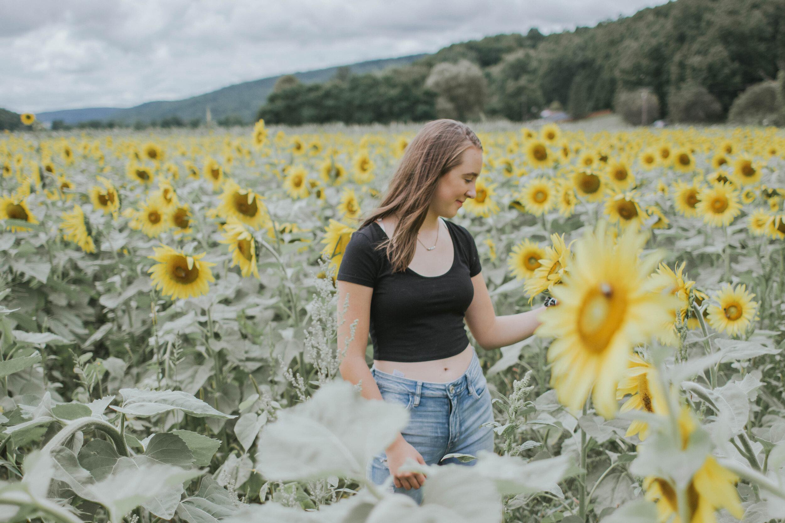 sunflowerlove-60.jpg