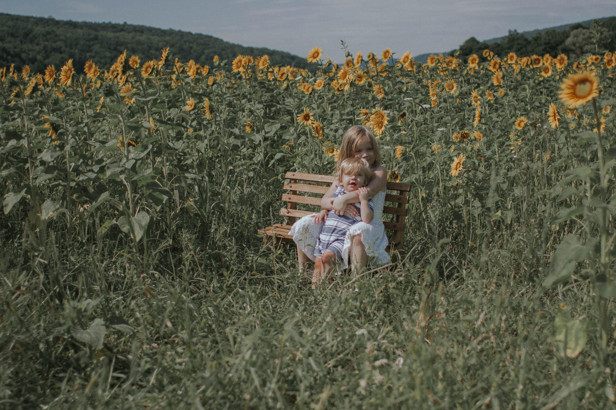 maggiemase_sunflowers_aug-15.jpg