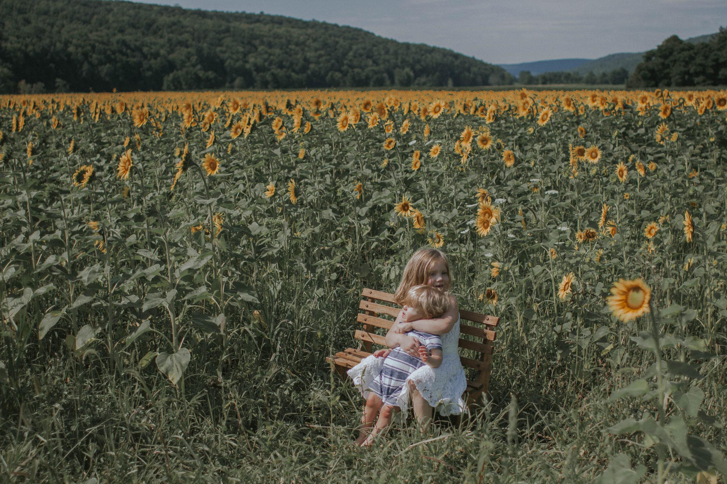 maggiemase_sunflowers_aug-9.jpg