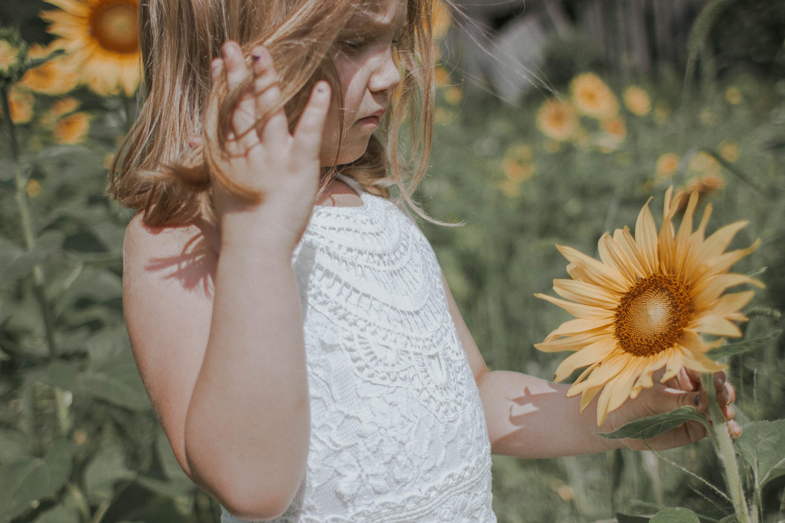 maggiemase_sunflowers_aug-30.jpg