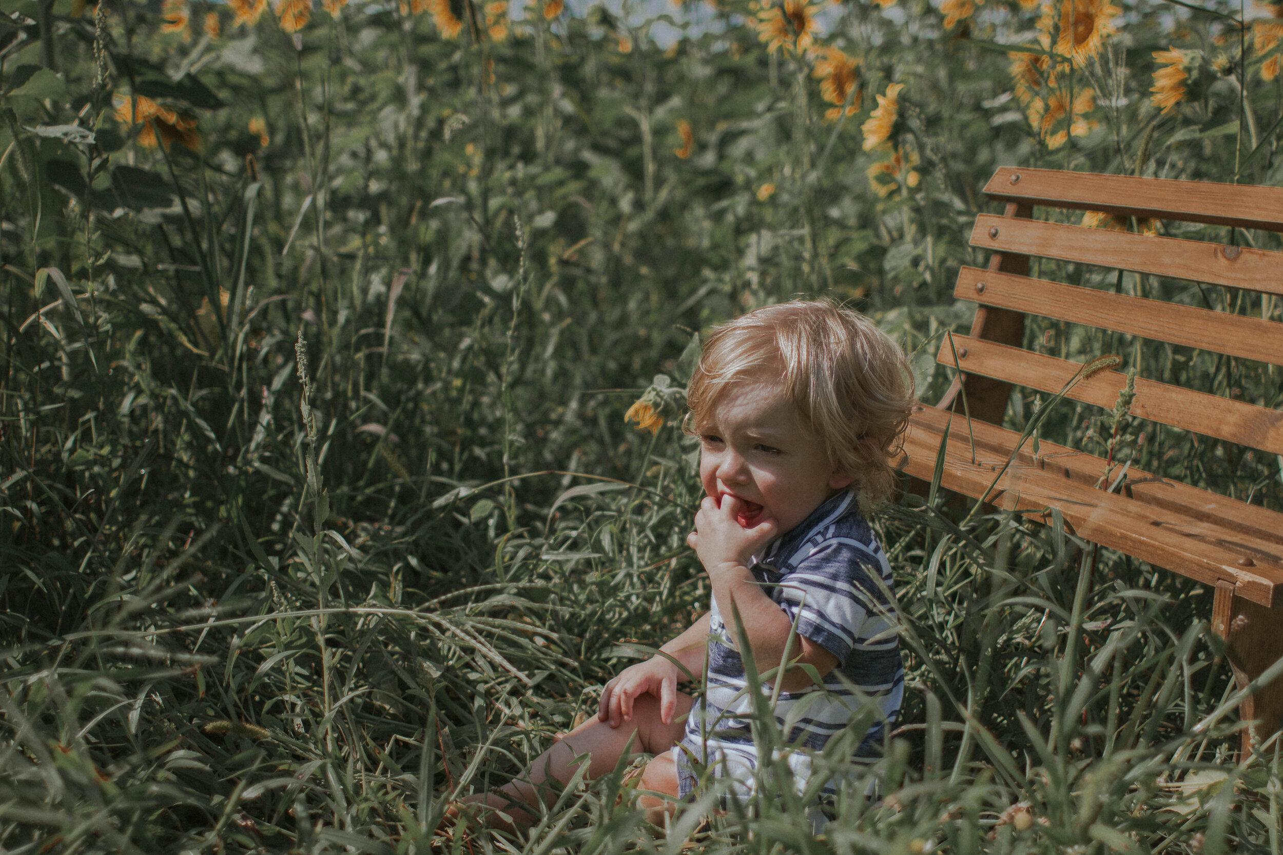 maggiemase_sunflowers_aug-36.jpg