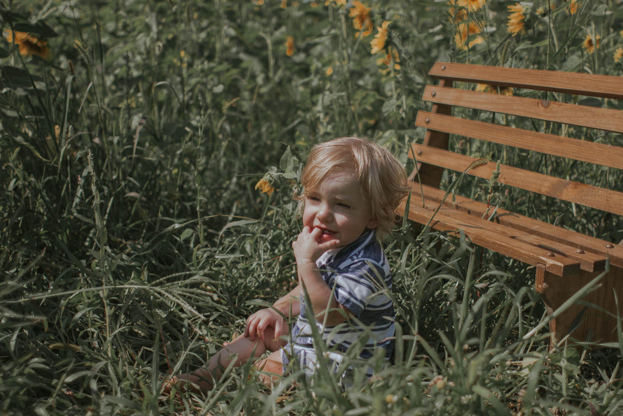 maggiemase_sunflowers_aug-38.jpg