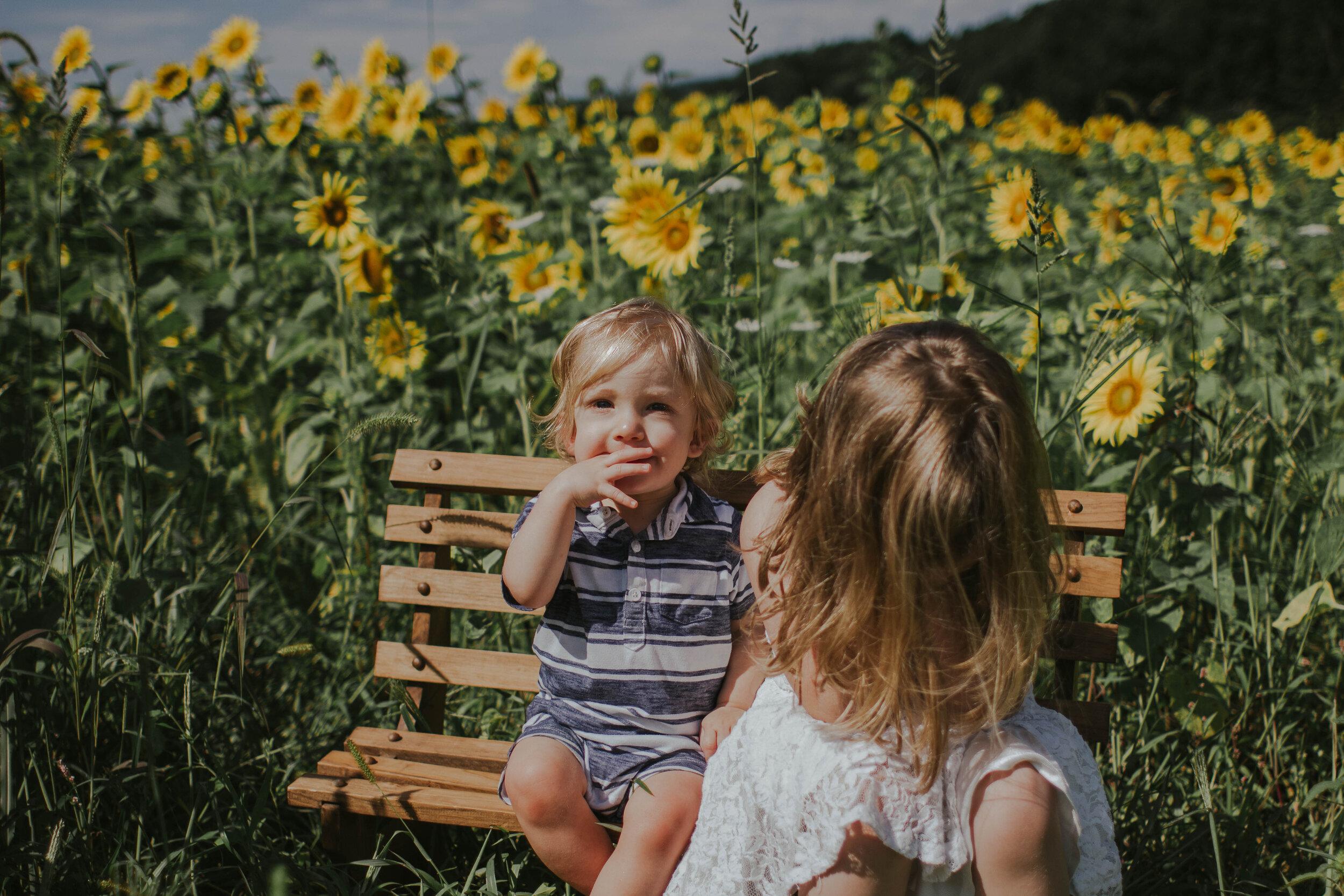 sunflowersmagsandmase-8.jpg