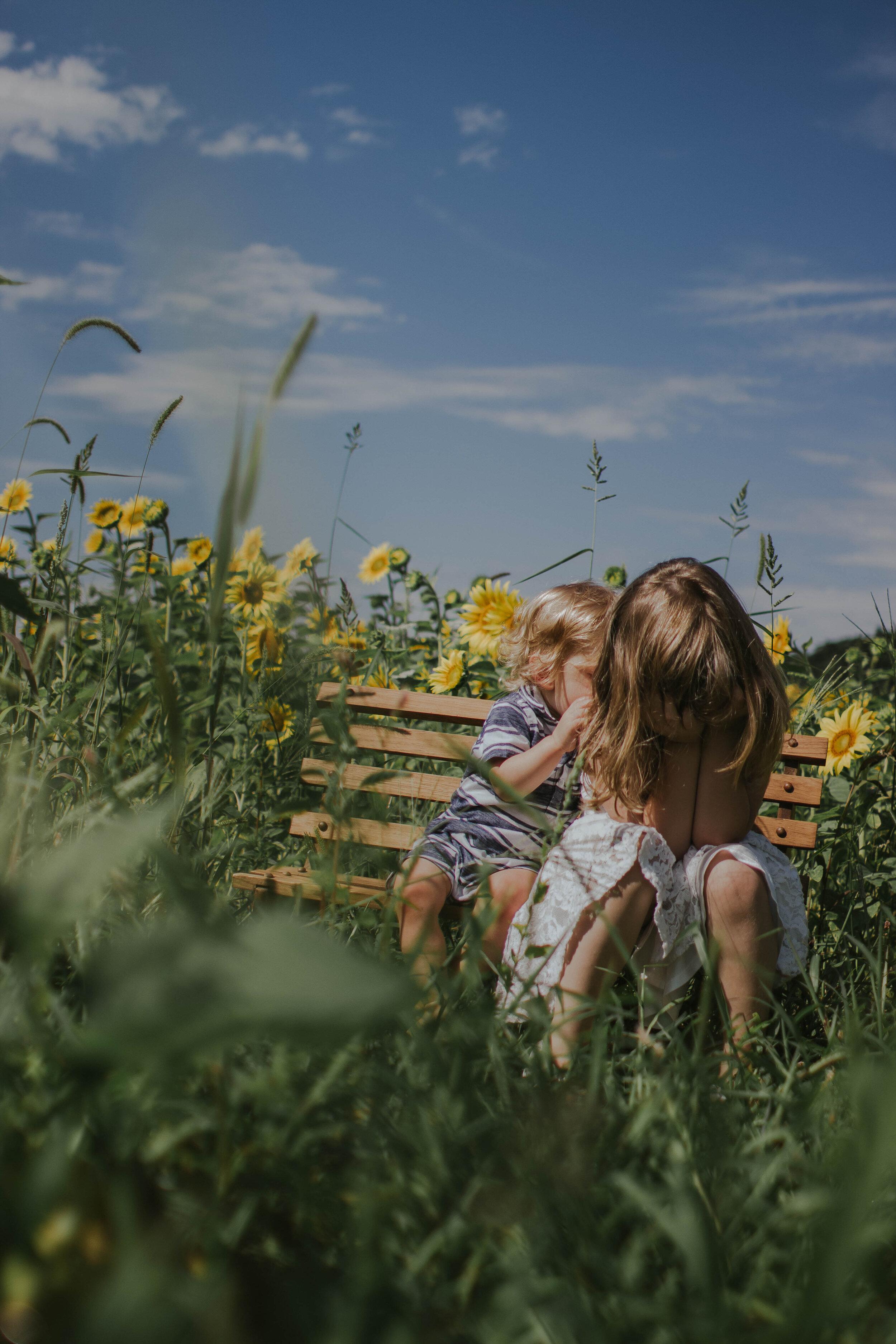 sunflowersmagsandmase-16.jpg