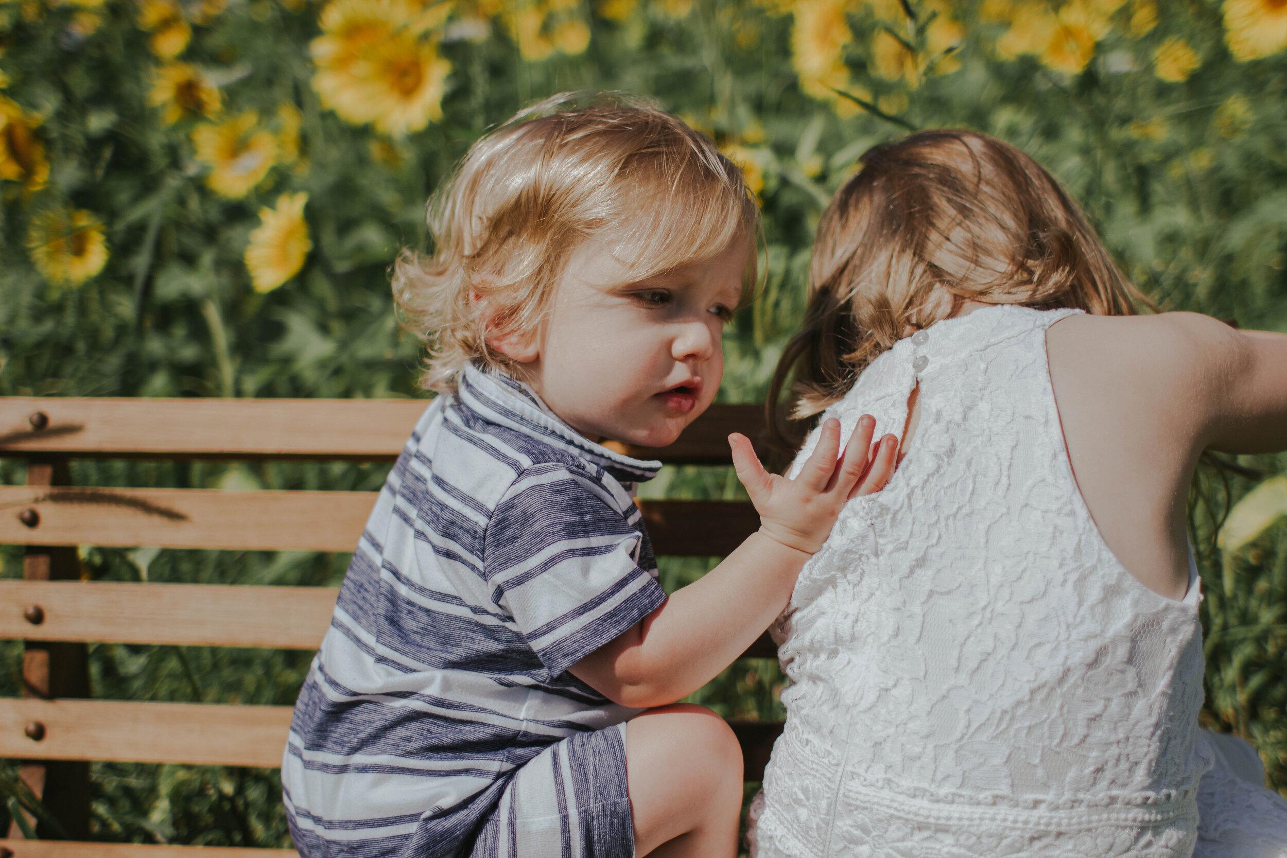 sunflowersmagsandmase-23.jpg