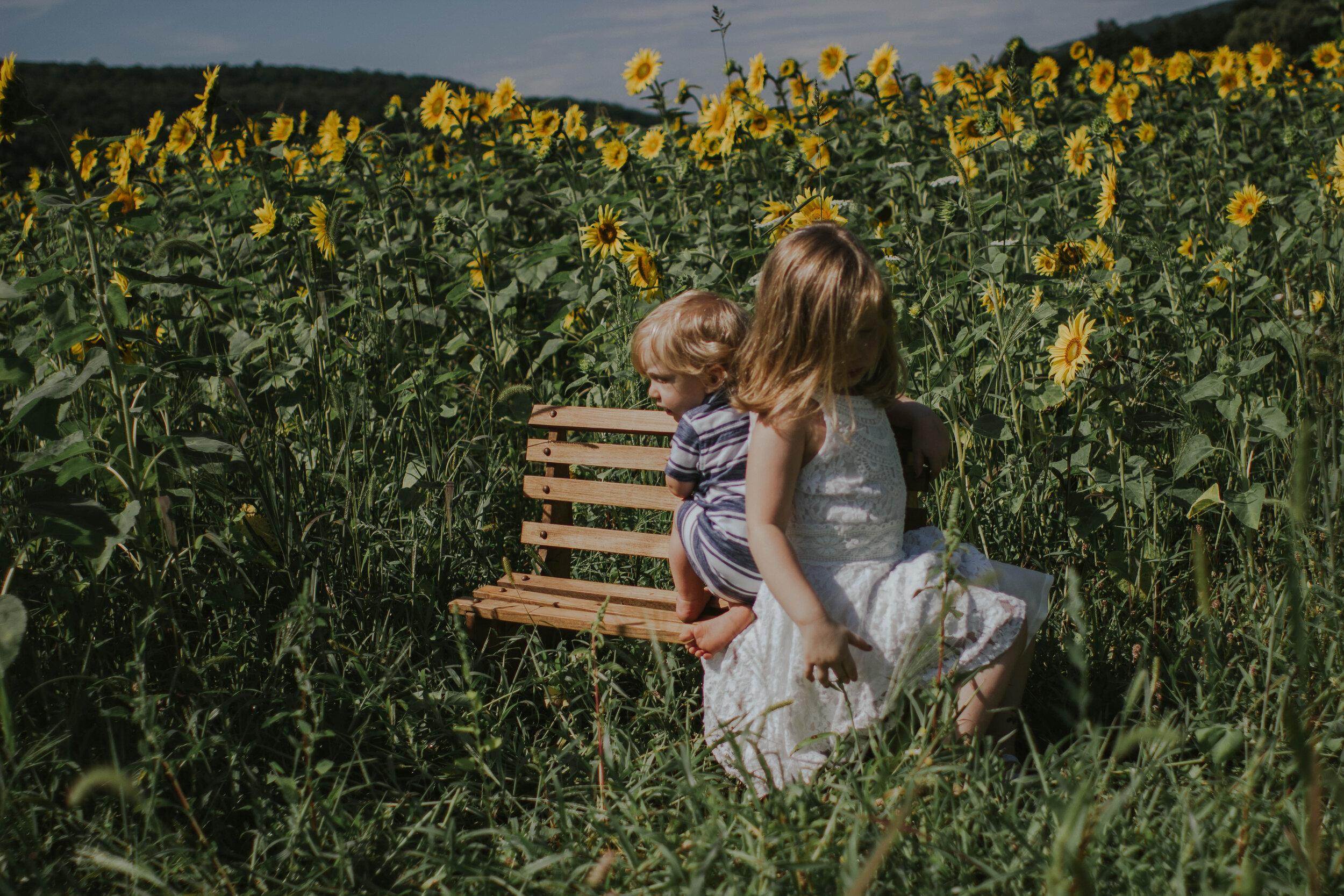 sunflowersmagsandmase-28.jpg
