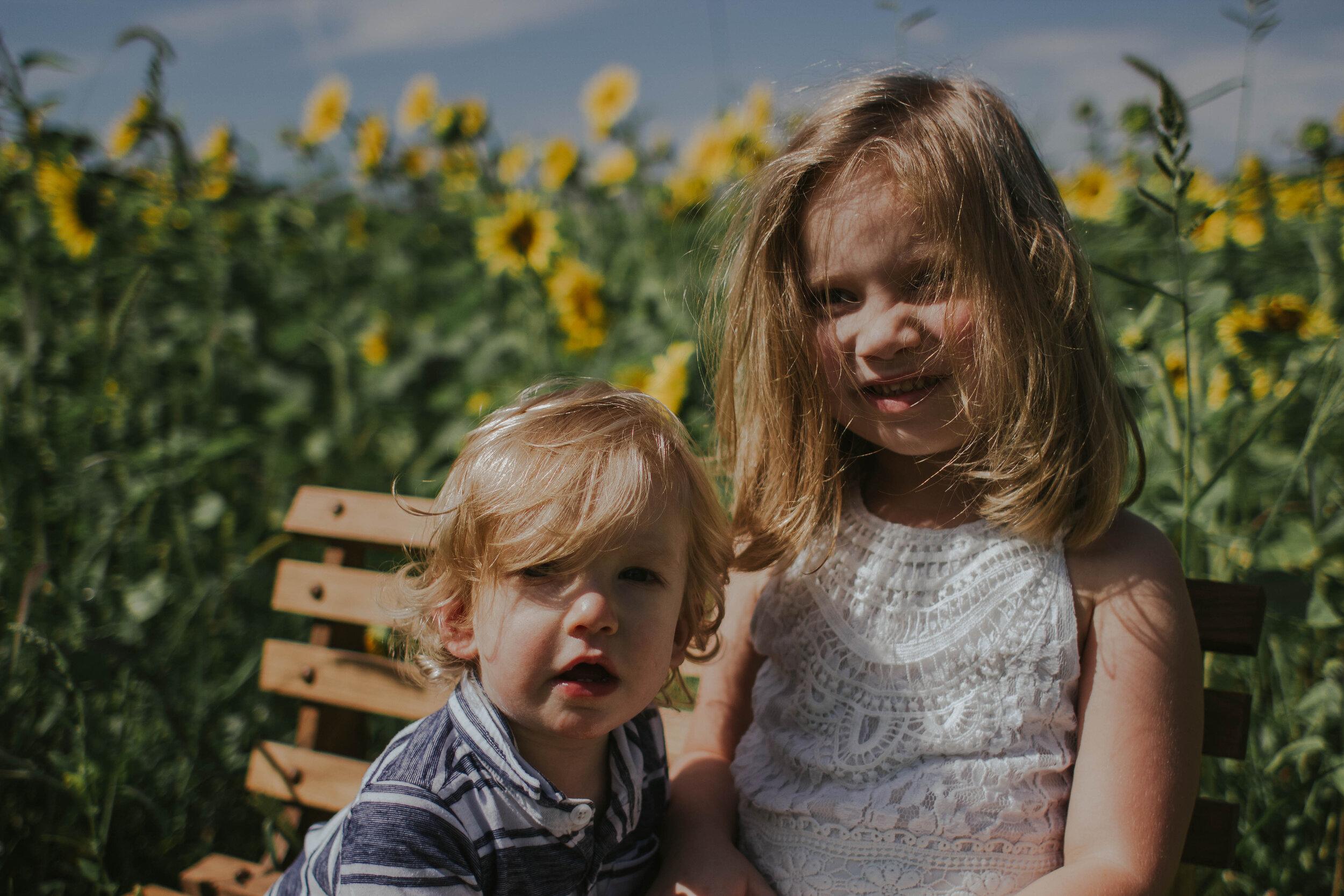 sunflowersmagsandmase-41.jpg
