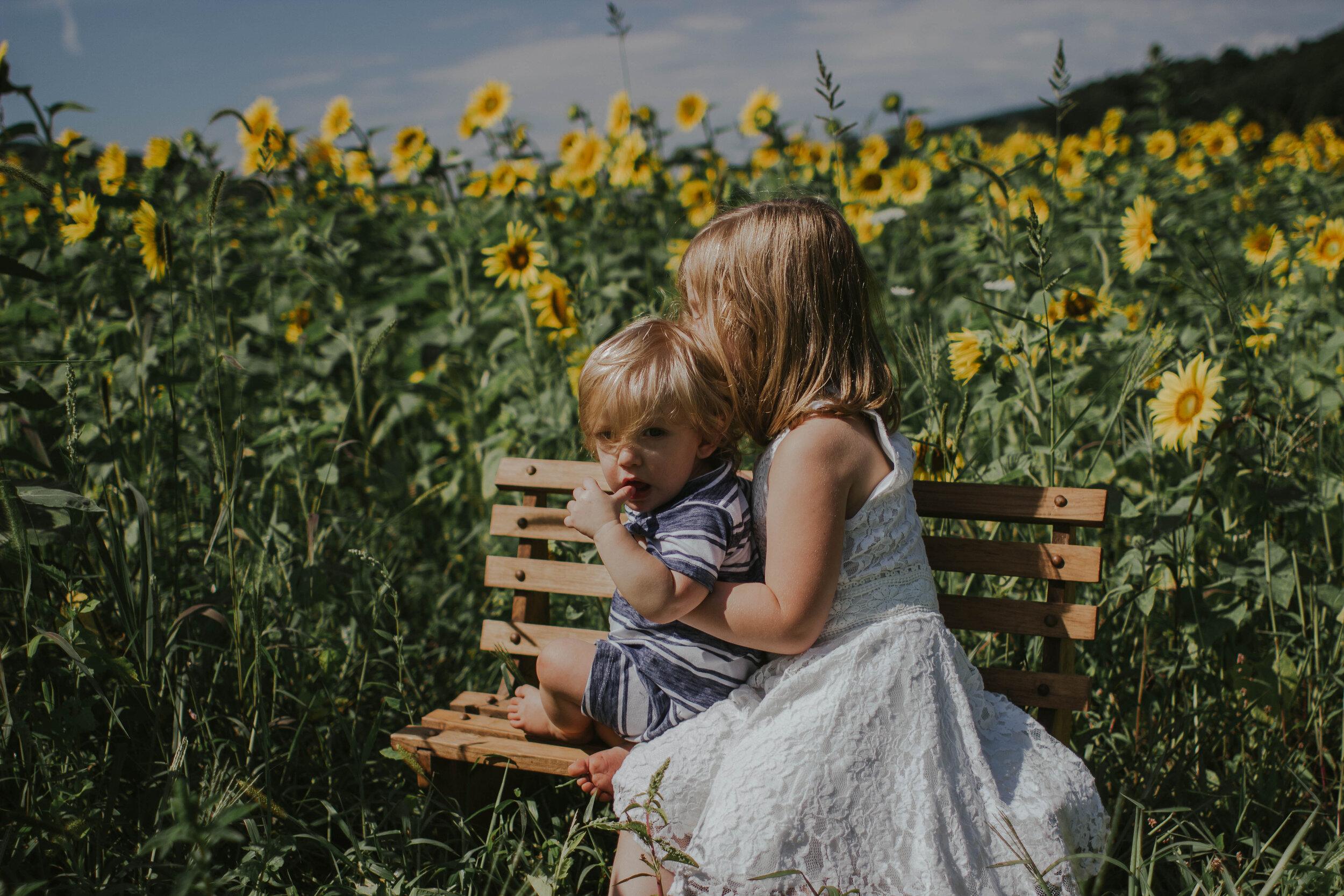 sunflowersmagsandmase-43.jpg