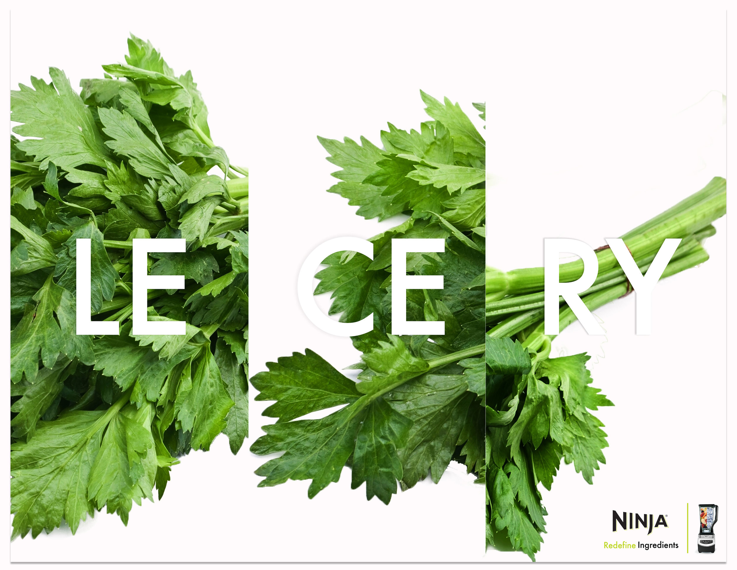 NINJA|Redefine|celery|HD2.jpg