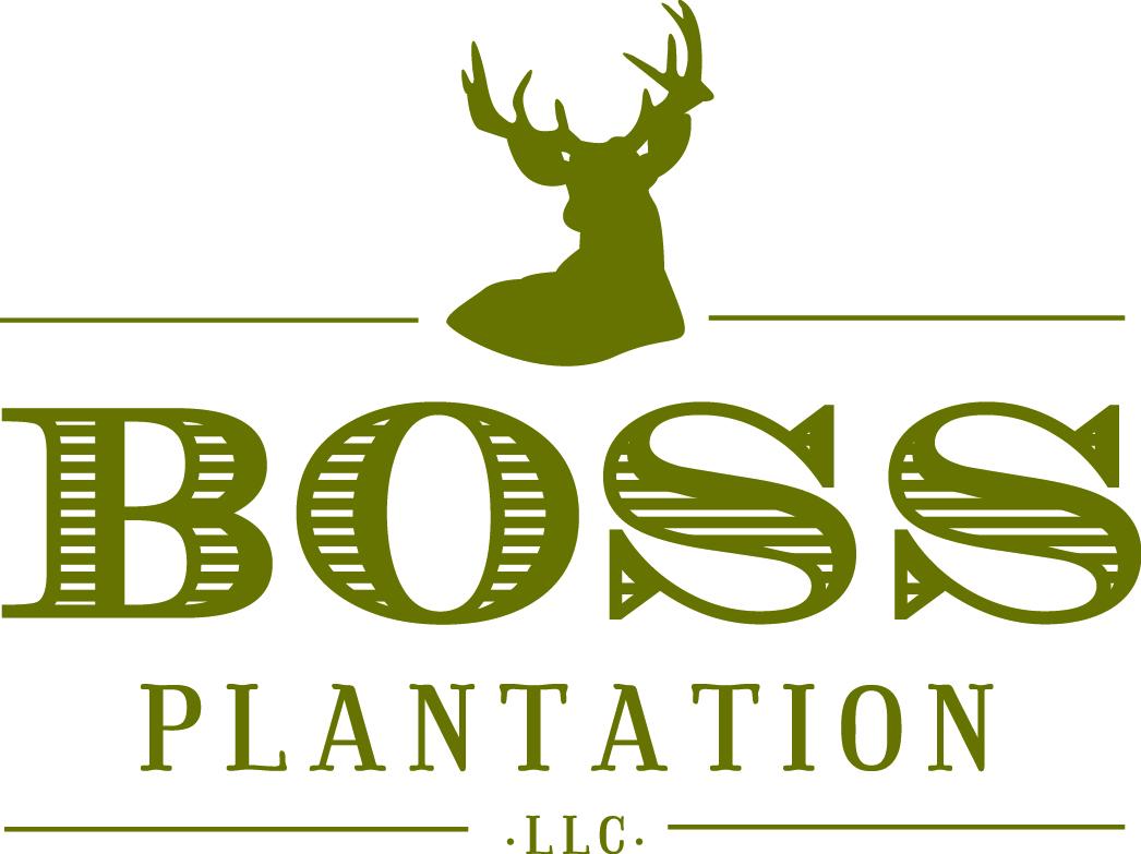 Boss Plantation logo - 2 gold.jpg