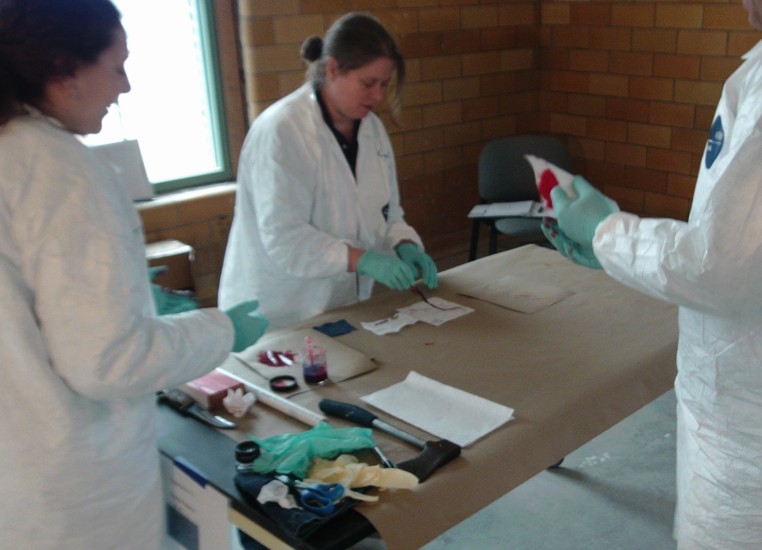 Team conducting experiments in pattern transfer.JPG