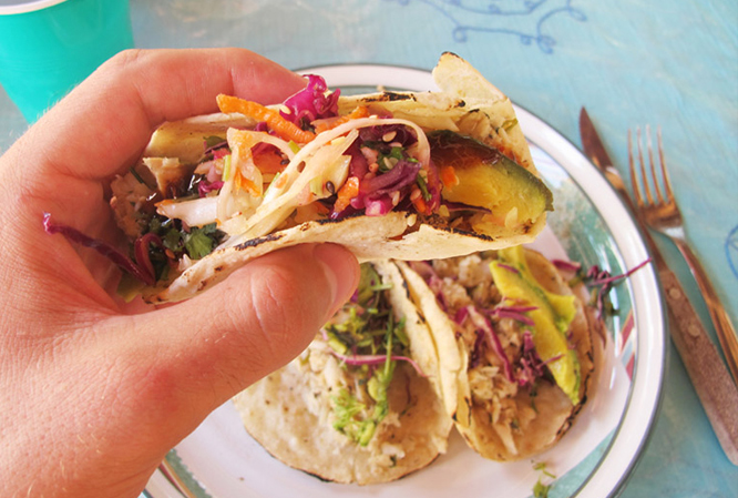 Dish Pig –  Pick your Poison: Lionfish Tacos in Mexico