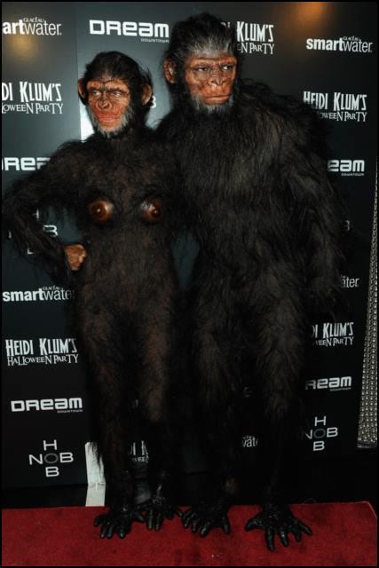 2011 • Chimp