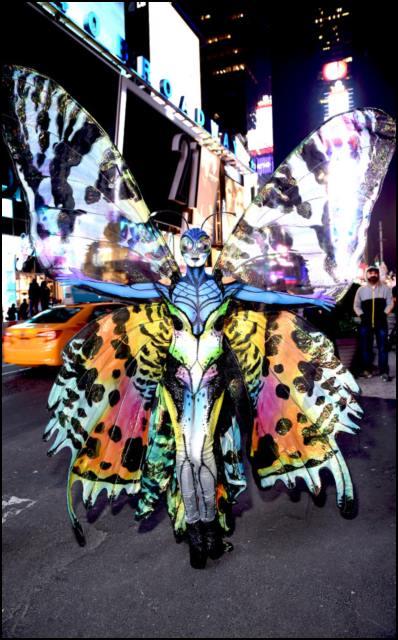 2014 • Butterfly