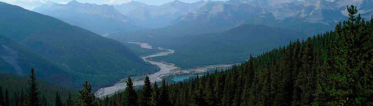 elbow-river-banner-home.jpg