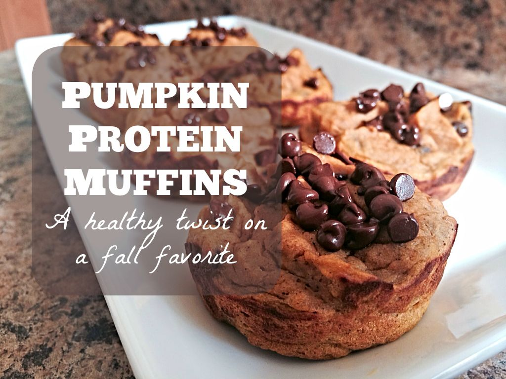 pumpkin protein muffins