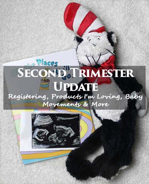 oh the places you'll go second trimester update.jpg