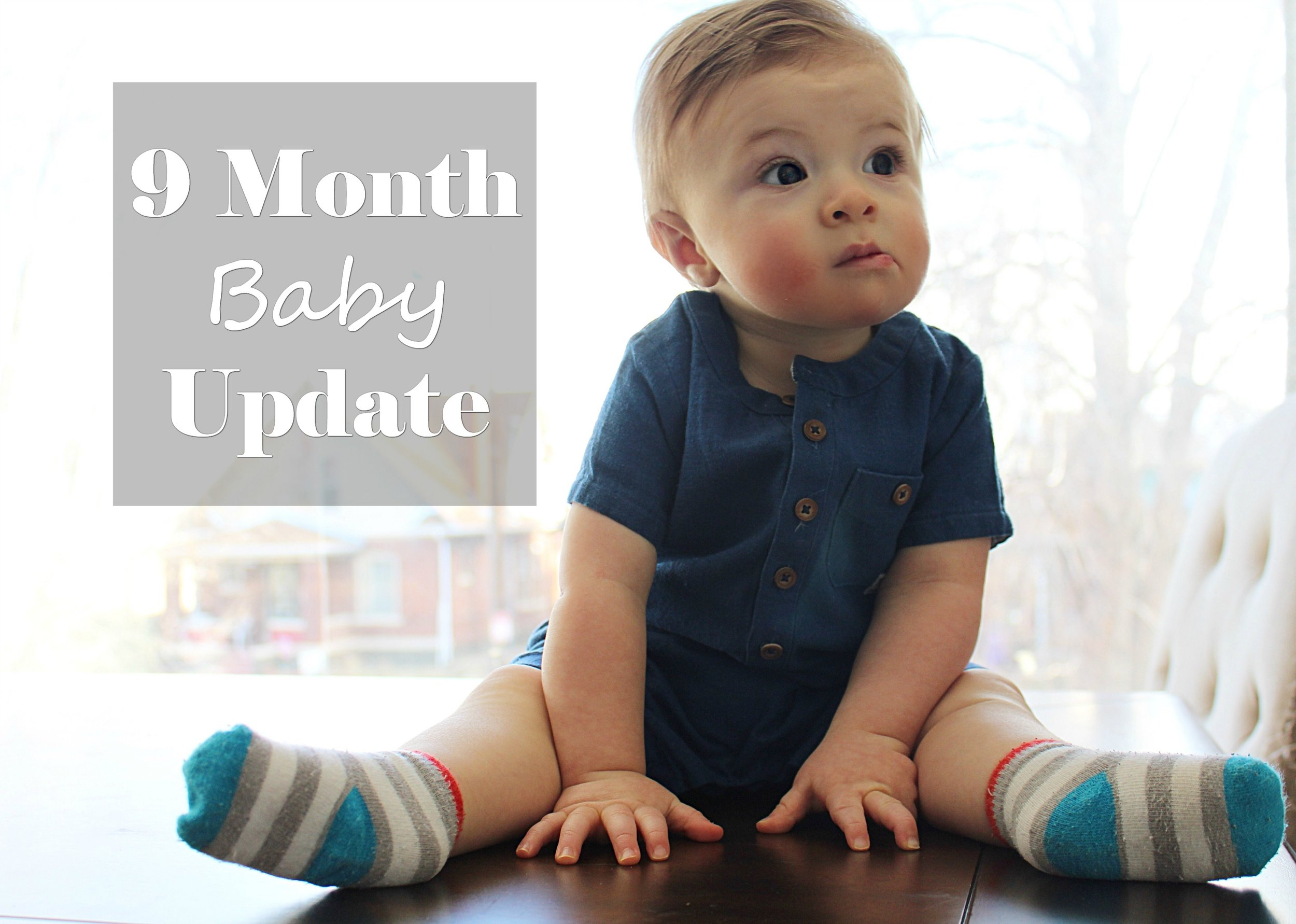 9 Month Baby Update