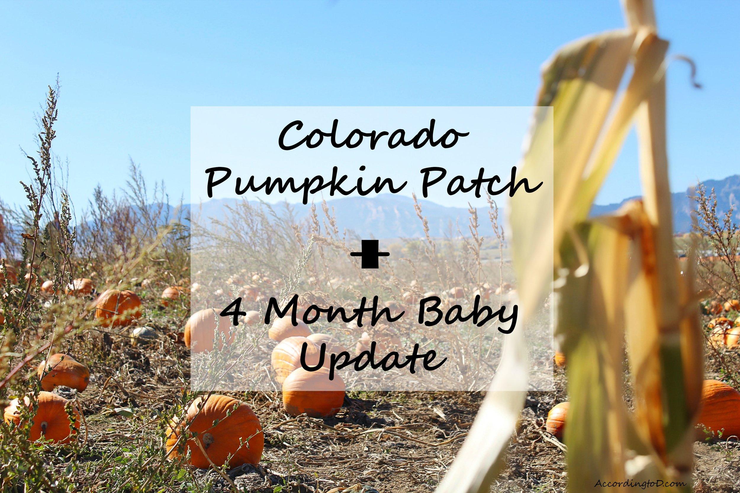 4-month-baby-update.jpg