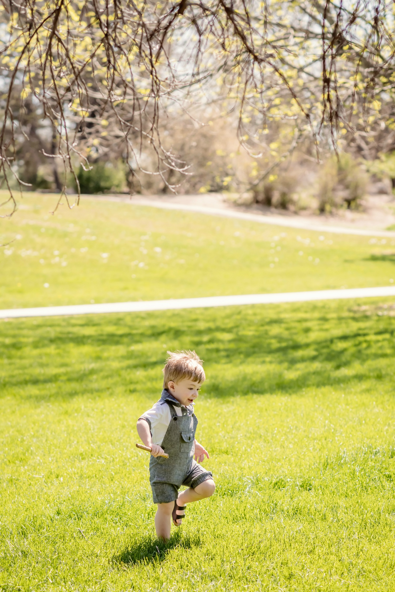 toddler boy family photos