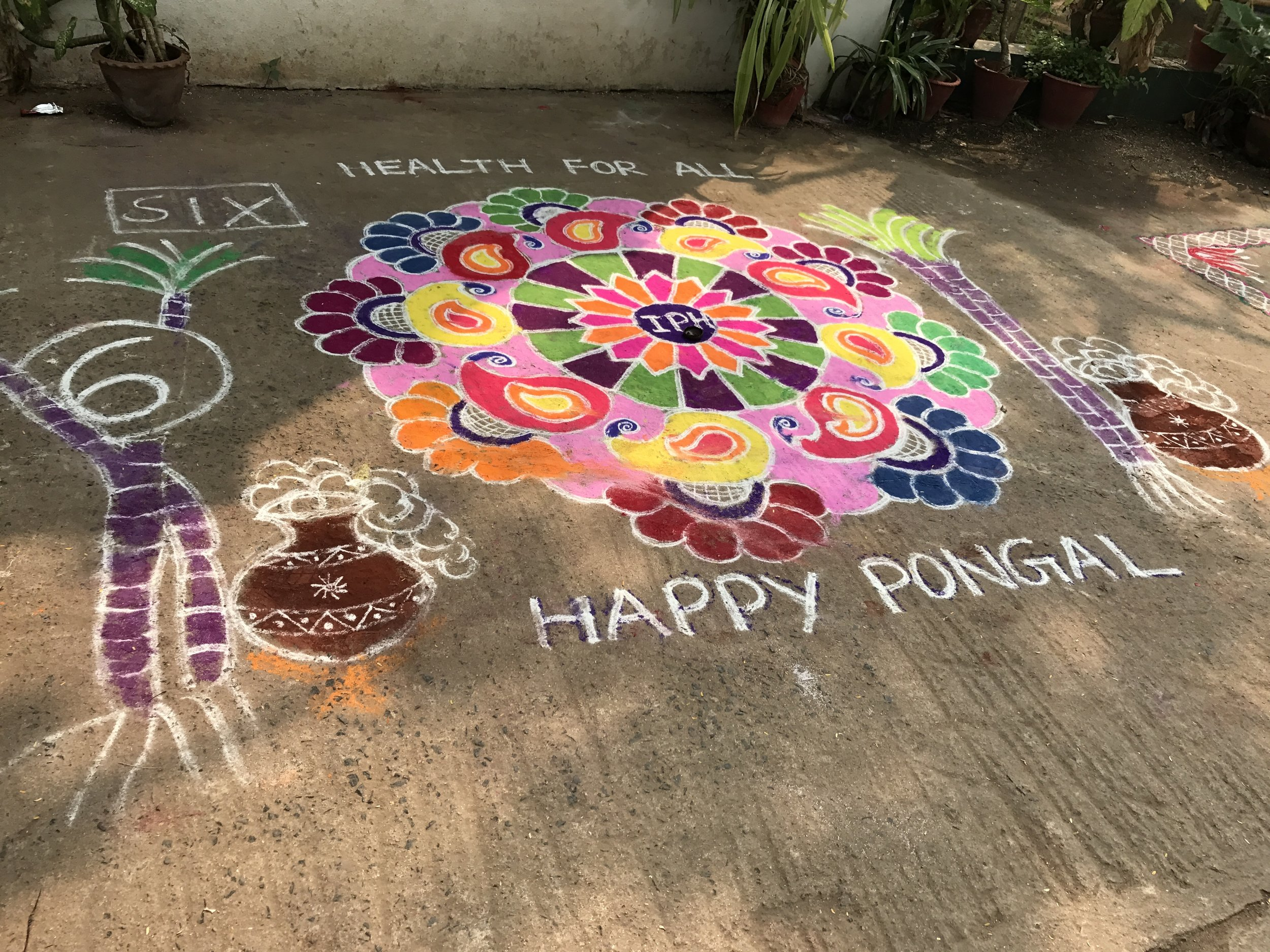 The day's activities included a  kolam  drawing competition between groups of nurses and staff members at the IPH. The designs are a Pongal tradition made mostly of colored chalk that often include flowers, candles, and other decorations.