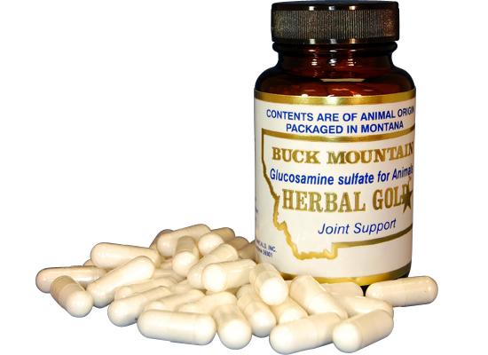 bm_glucosamine-sulfate-caps.jpg
