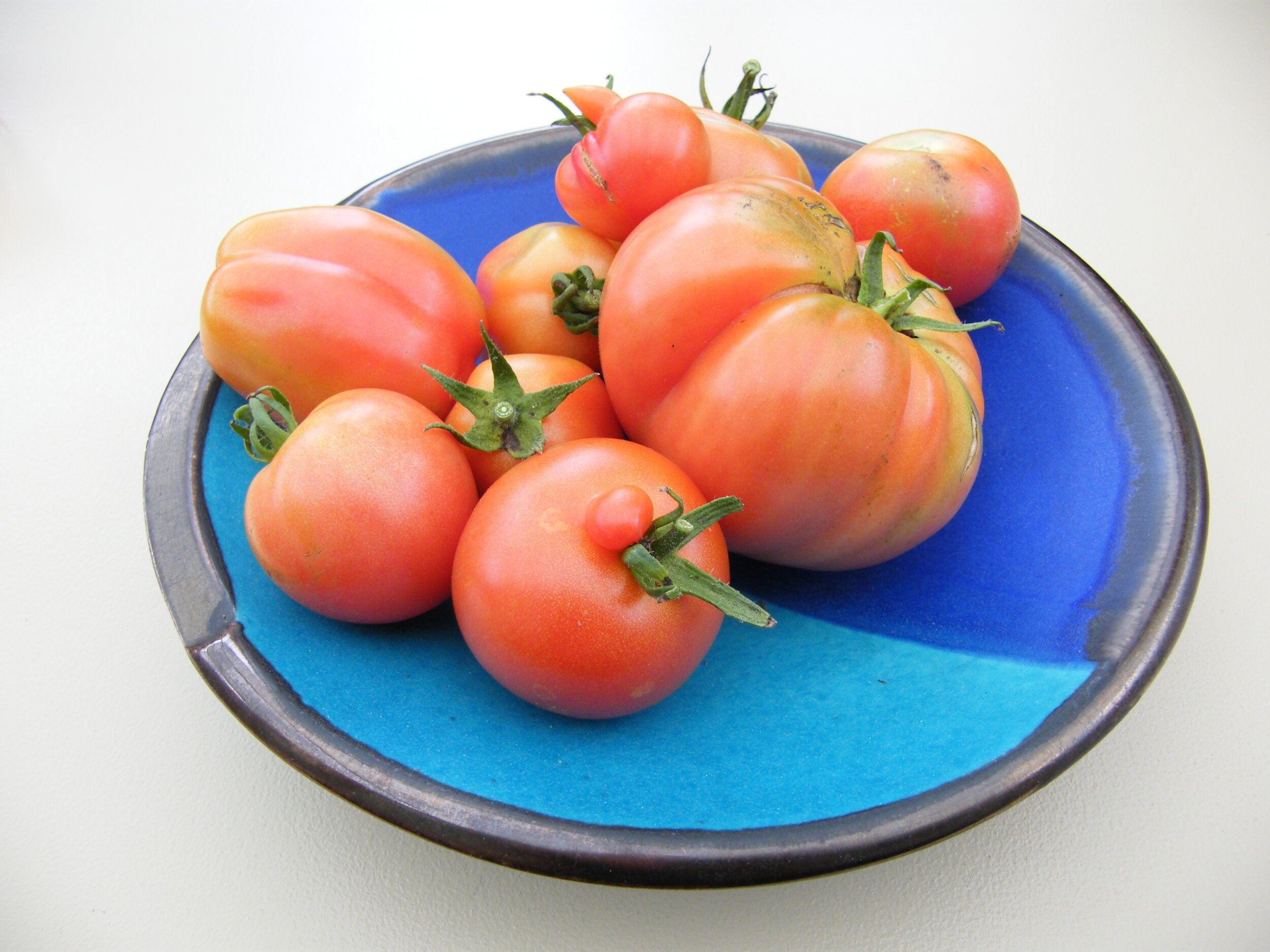 When ripe, pick some tomatoes.